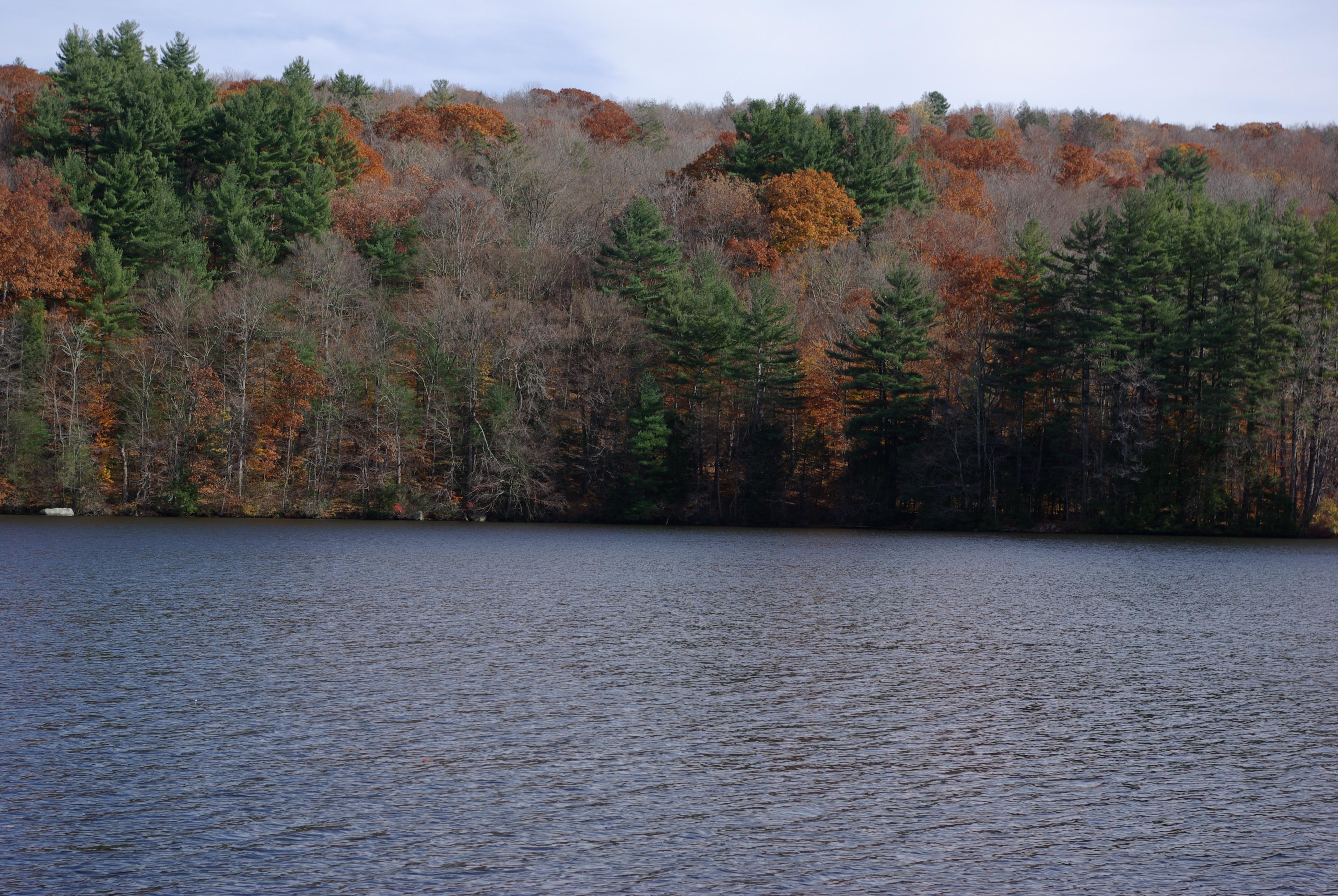 Terreno per Vendita alle ore Rare Waterfront Lot on Pristine Pond 46 Town Hill Road Goshen, Connecticut, 06756 Stati Uniti