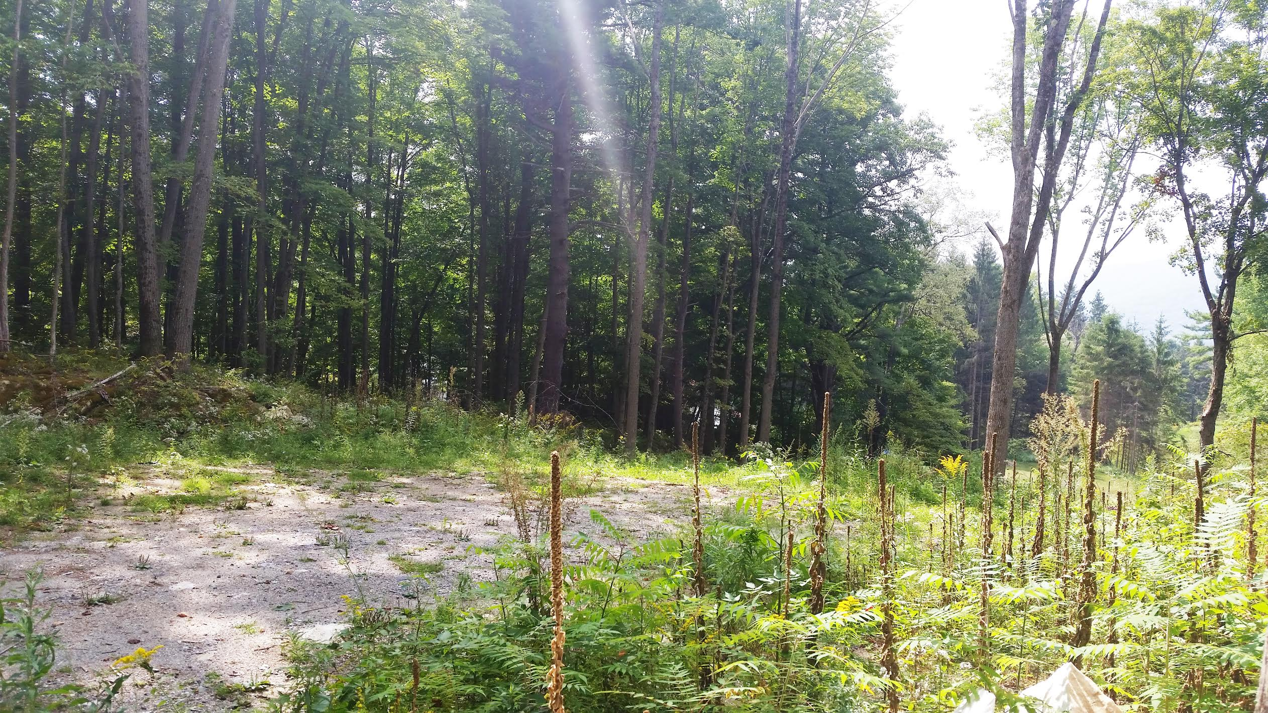 Land for Sale at Mountain Views & Stroll to Downtown 33 Lenox Road West Stockbridge, Massachusetts 01266 United States