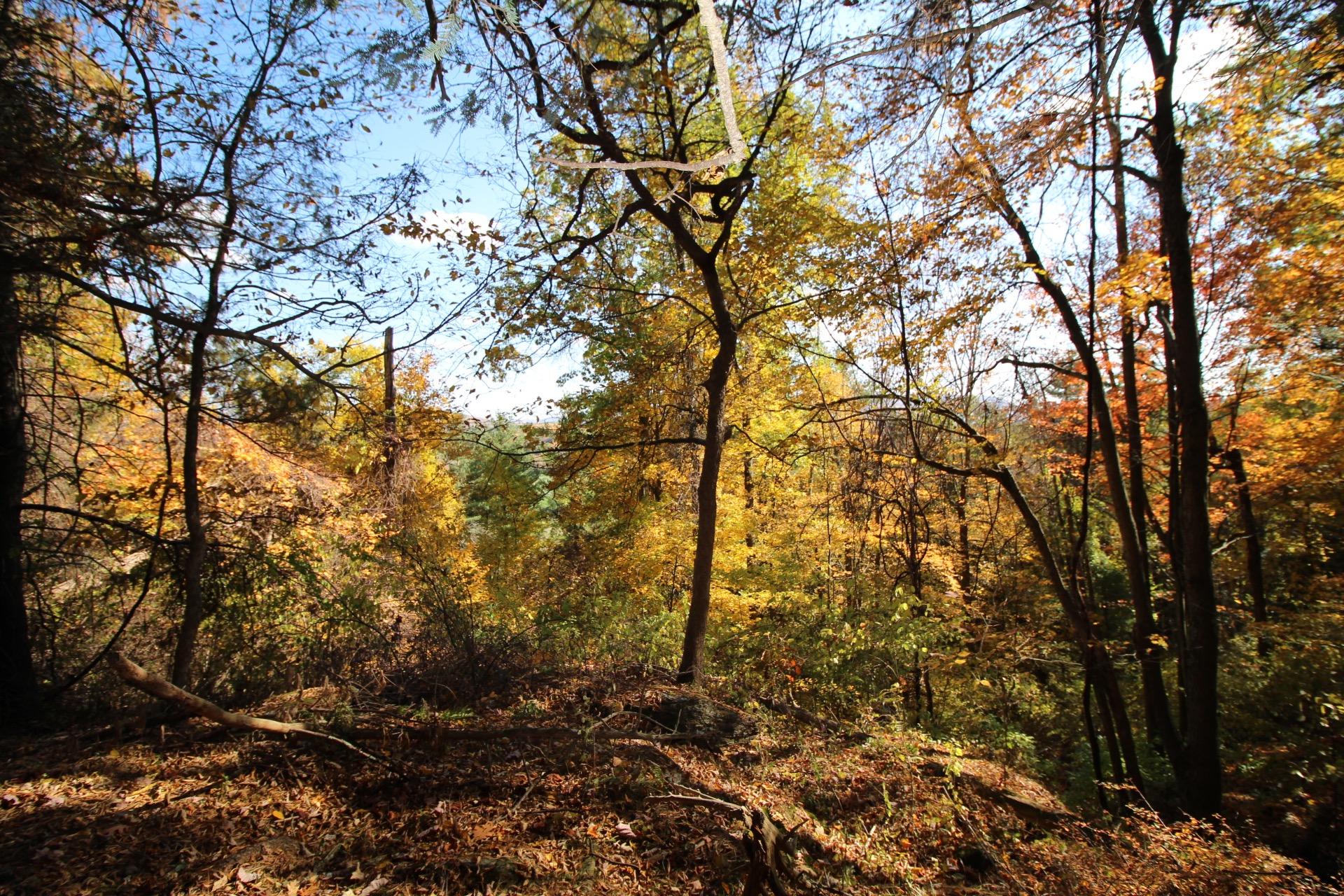 Terreno per Vendita alle ore Pristine and Private Berkshire Acreage Weatogue Rd Sheffield, Massachusetts, 01222 Stati Uniti