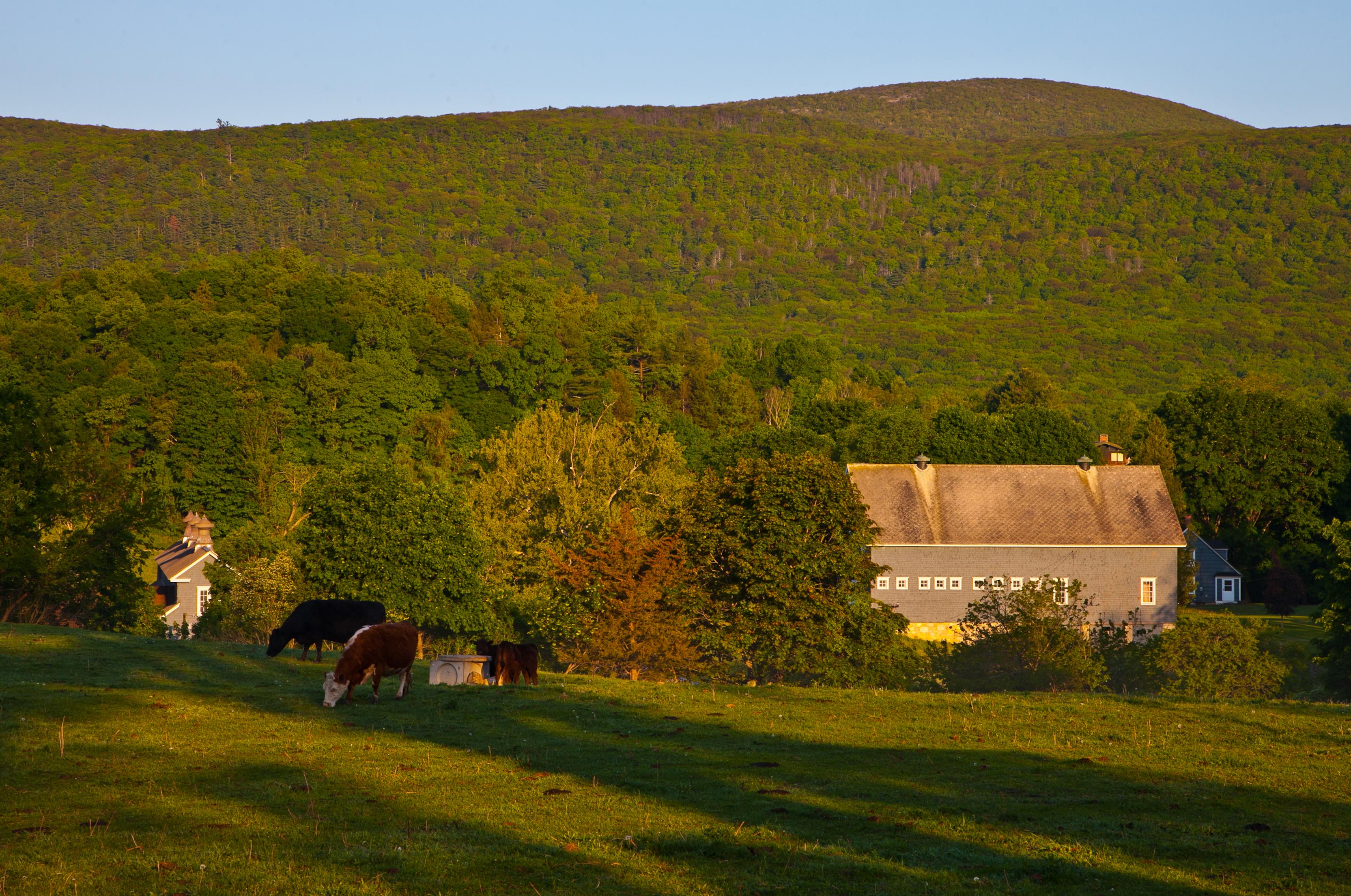 土地 为 销售 在 Grassland Farms 65 Hammertown Rd 索尔茨伯里市, 康涅狄格州, 06068 美国