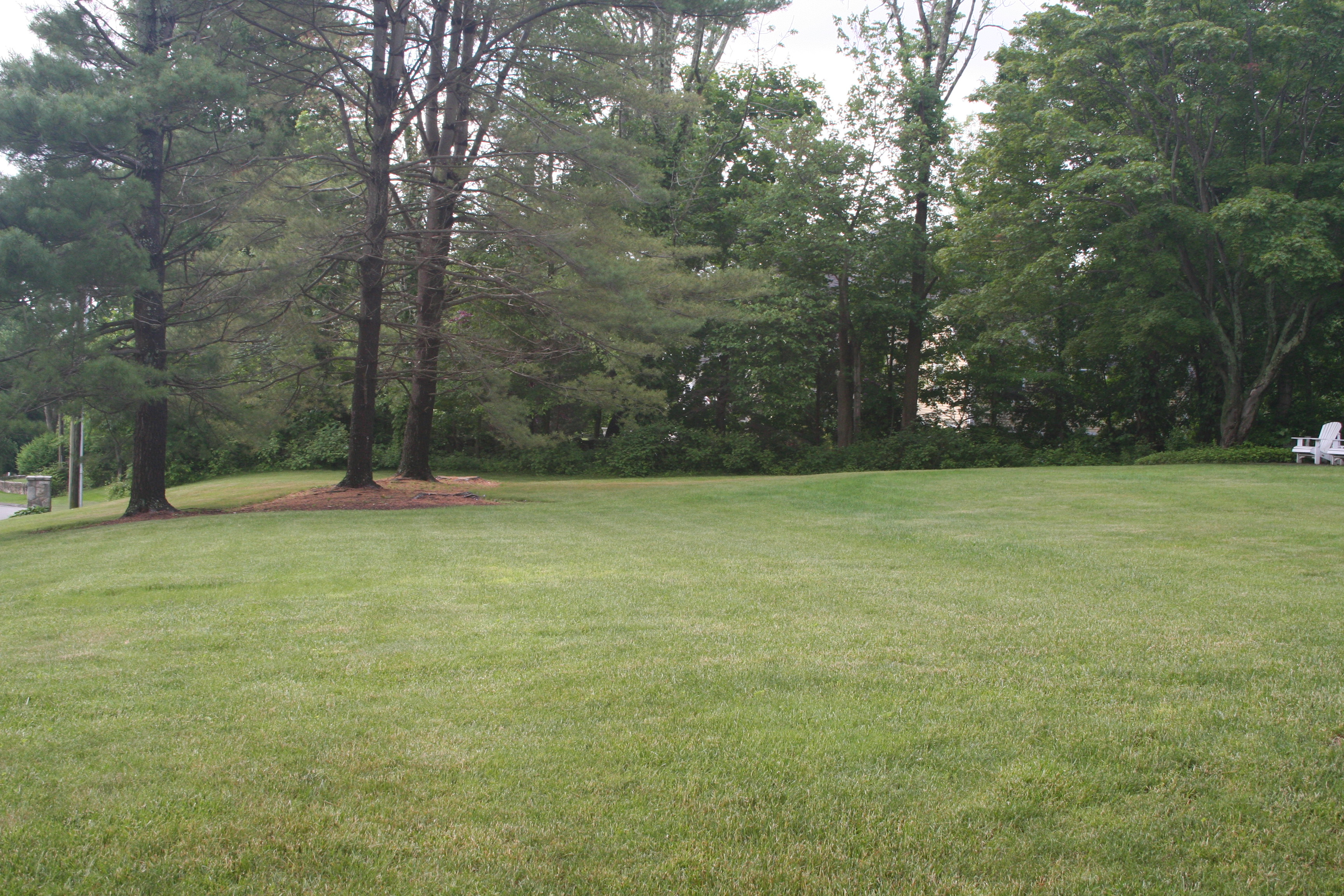Property For Sale at Great West Side Lot