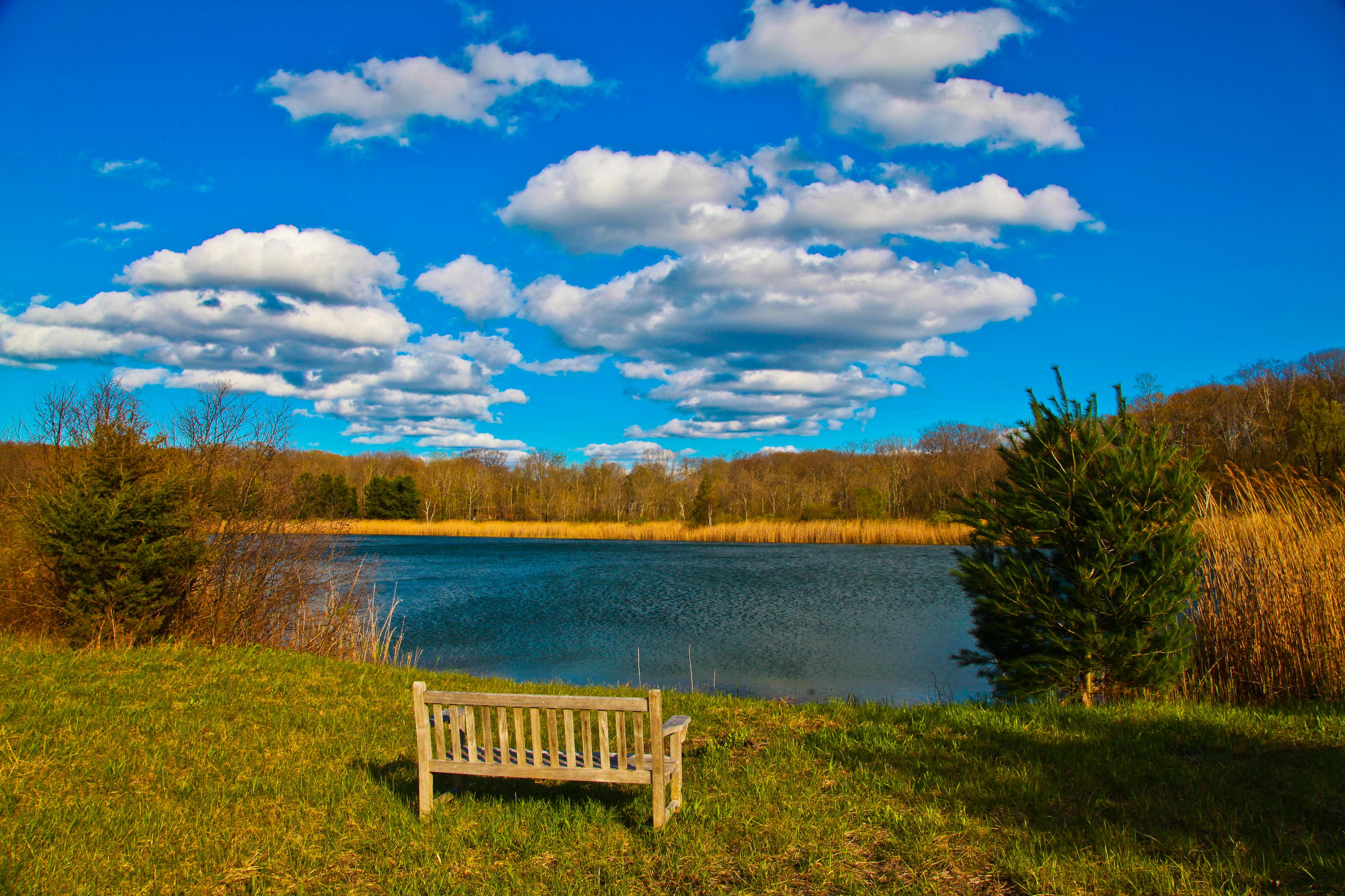sales property at Lakeville Pond Property