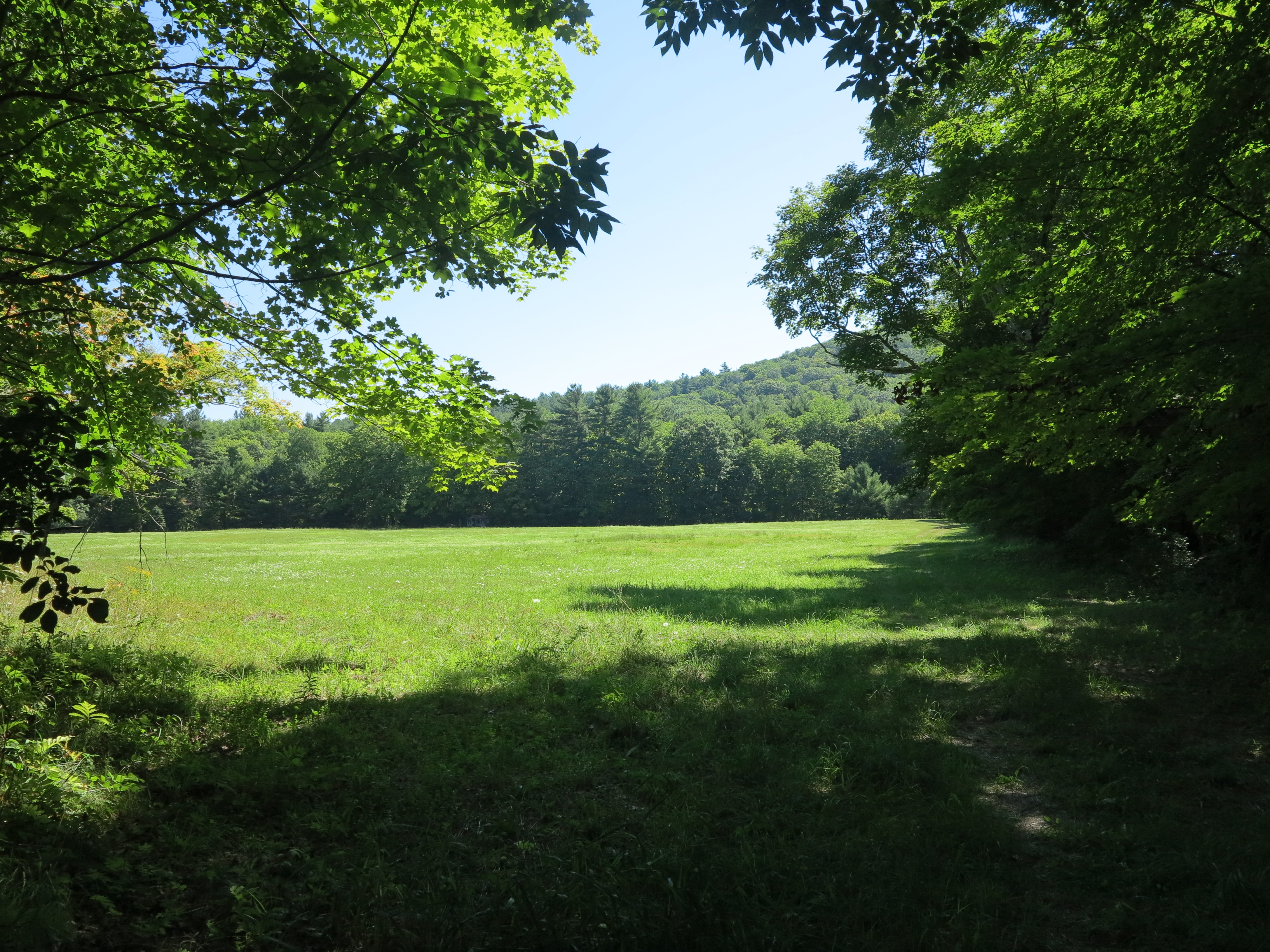 Terreno para Venda às Bucolic Estate Parcel on 21.75 Acres with River Frontage and Meadow 106 New Marlborough Southfield Rd New Marlborough, Massachusetts, 01230 Estados Unidos