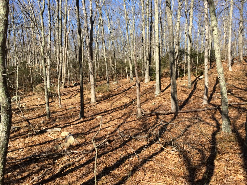 Land for Sale at Great Opportunity To Build 0West Main Street Niantic, Connecticut 06333 United States