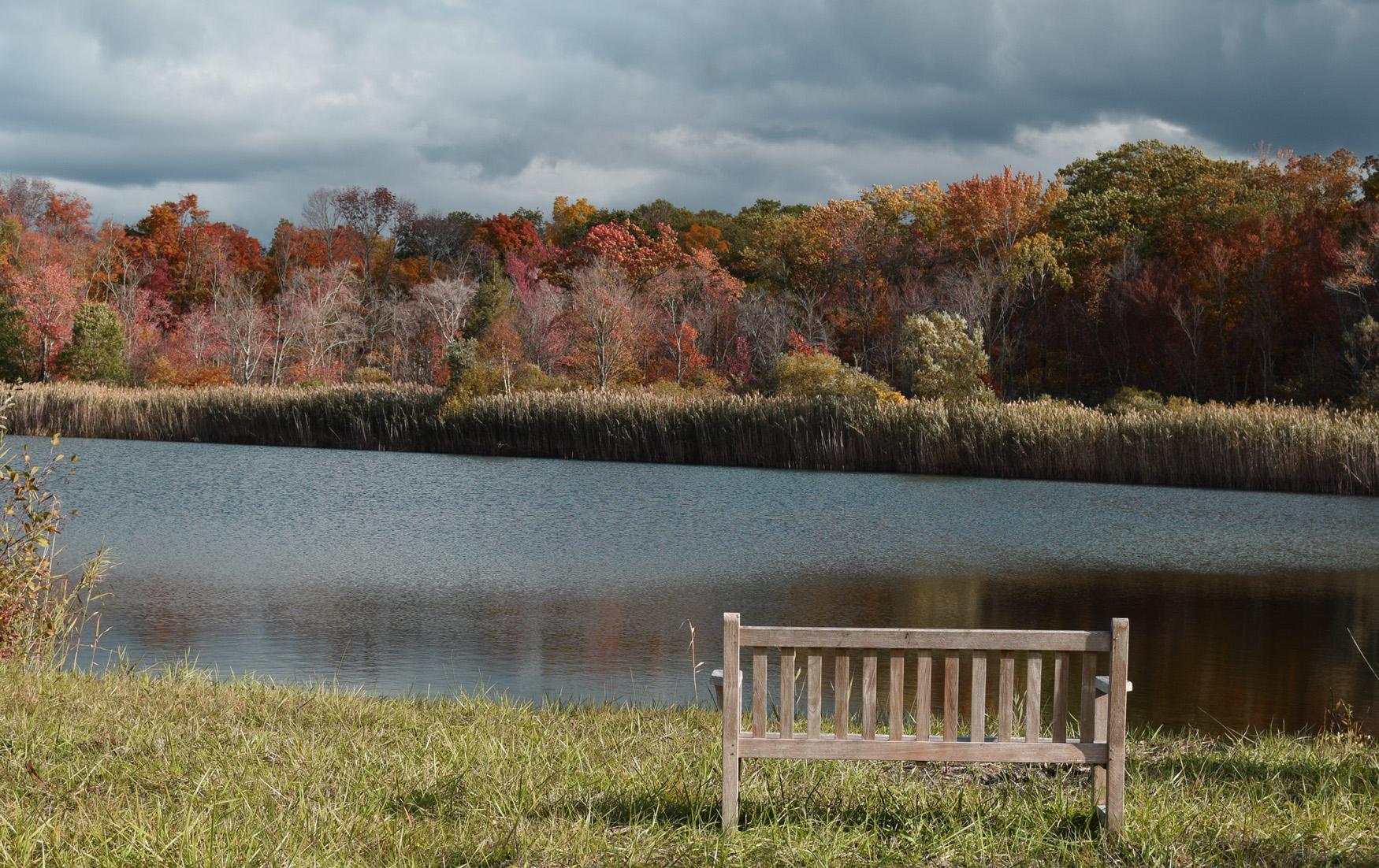 Property For Sale at Lakeville Pond Property