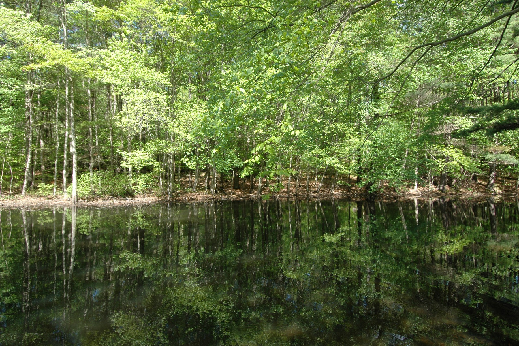 Property For Sale at Heron Pond Lot