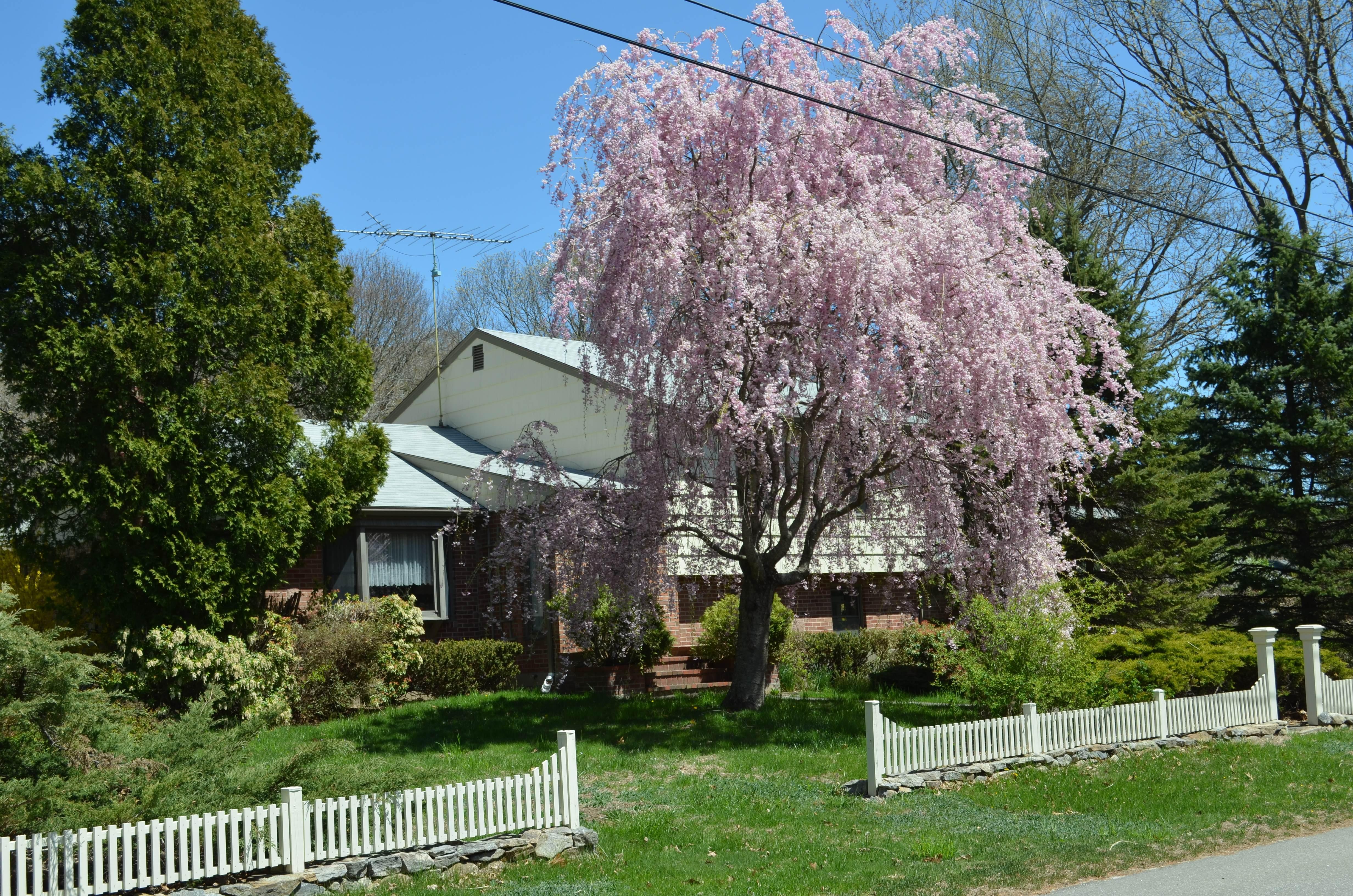 独户住宅 为 销售 在 6 Ridge Drive South 旧赛布鲁克, 康涅狄格州, 06475 美国