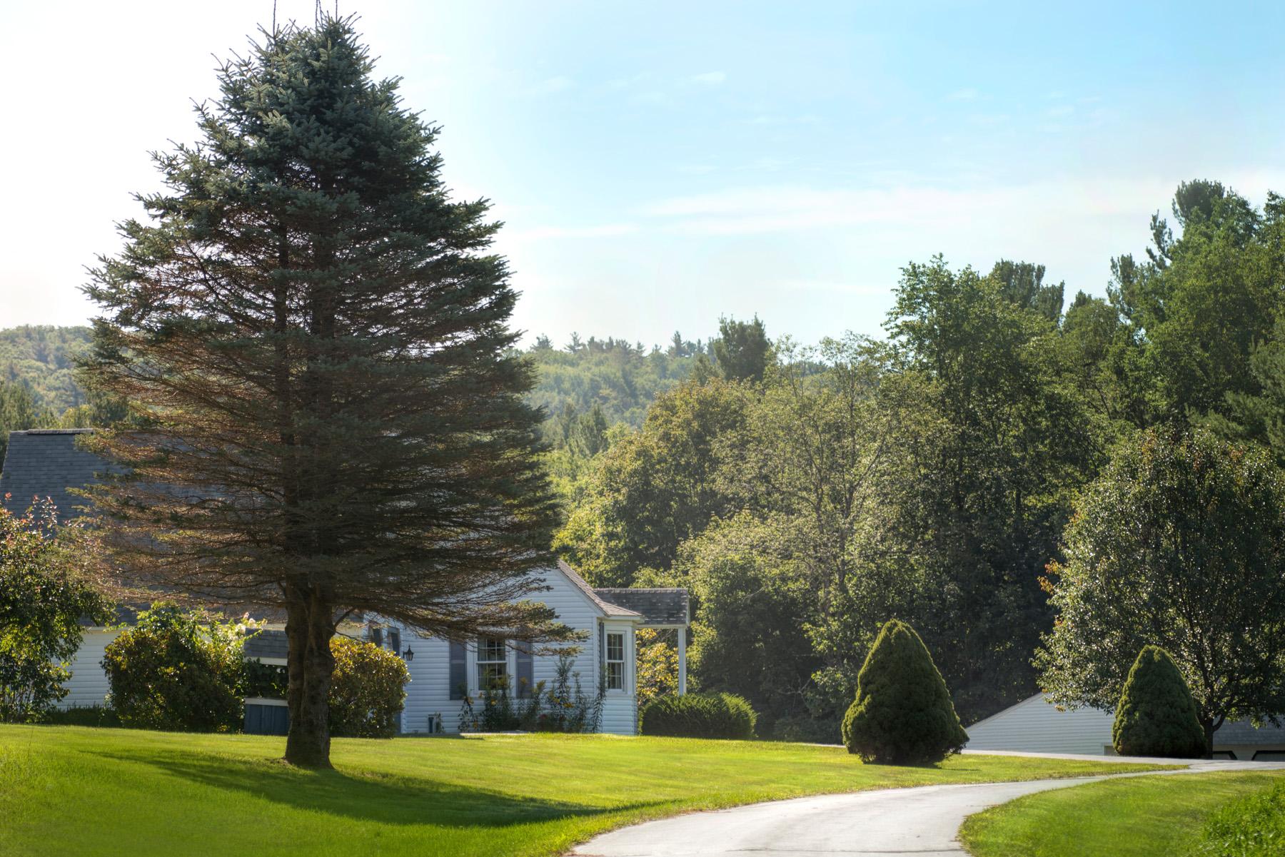 단독 가정 주택 용 매매 에 Outstanding 140+ Acre Property, with picturesque 2,379 SF Cape. 540 Main Rd Monterey, 매사추세츠 01245 미국