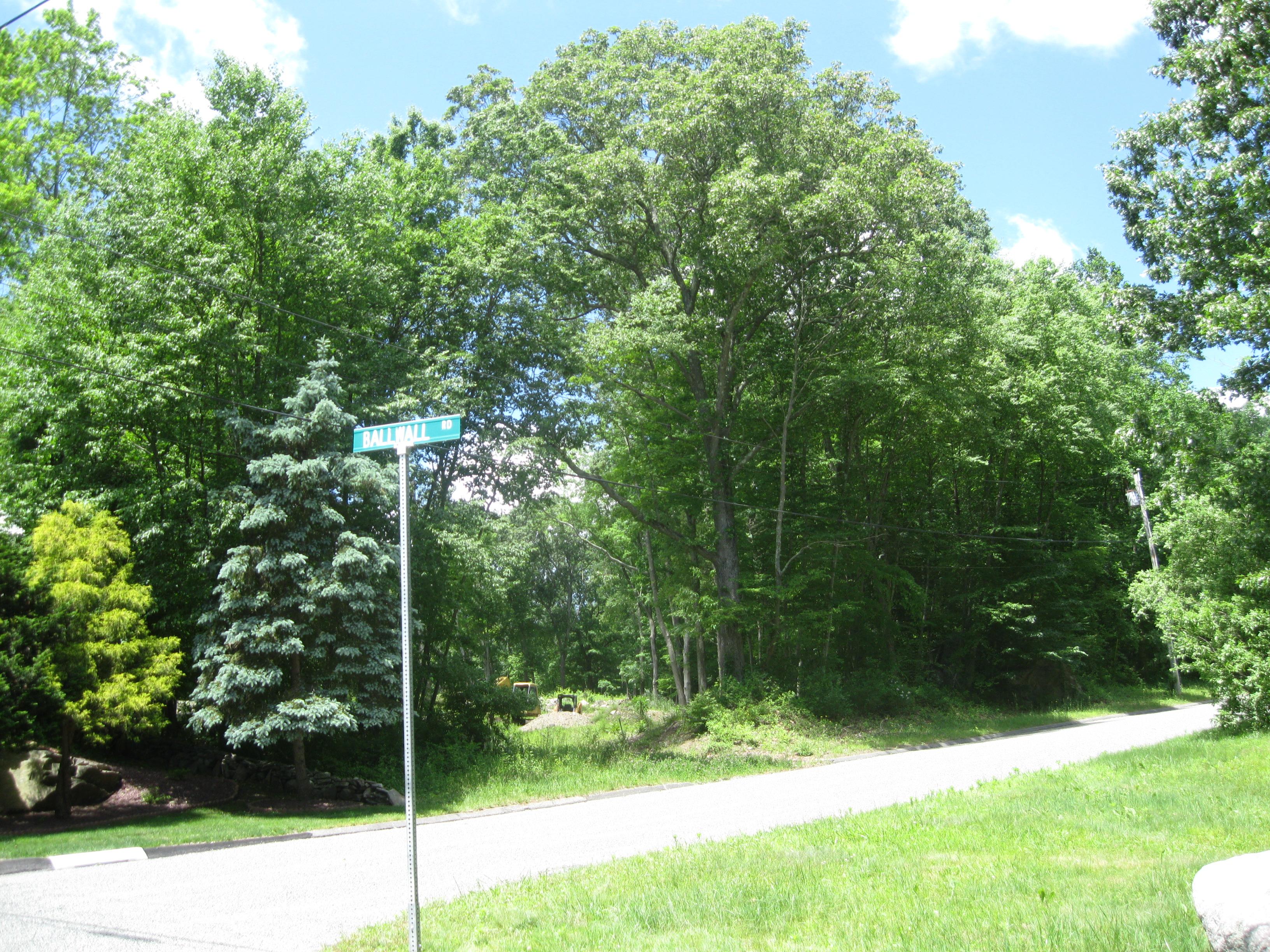 Земля для того Продажа на Approved Subdivision Lot in Established Easton Neighborhood 59 Tranquility Drive Easton, Коннектикут 06612 Соединенные Штаты