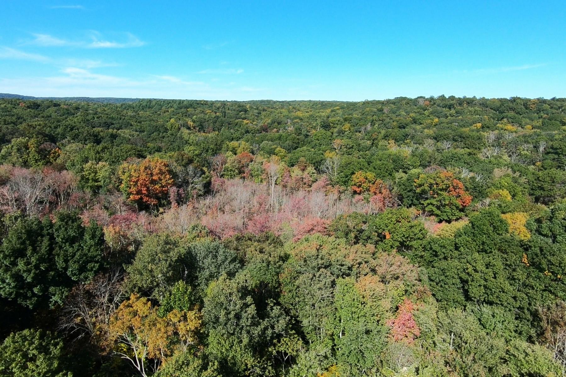 Land for Sale at Cranberry Bog Estates 9 Hoopole Hill Road, Deep River, Connecticut 06417 United States