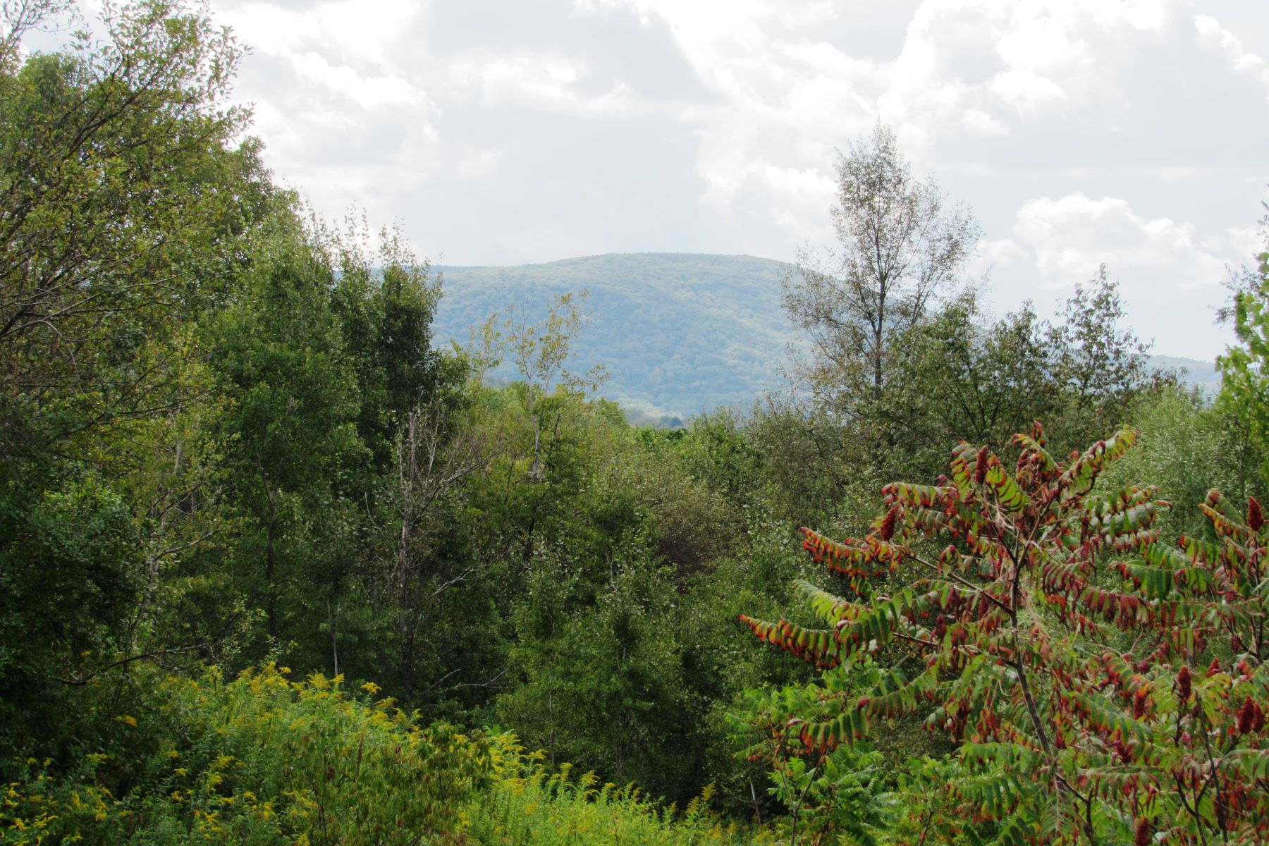 Land for Active at Now is the Perfect Time to Build Your Dream Home 2 Silver Mine Ln West Stockbridge, Massachusetts 01266 United States