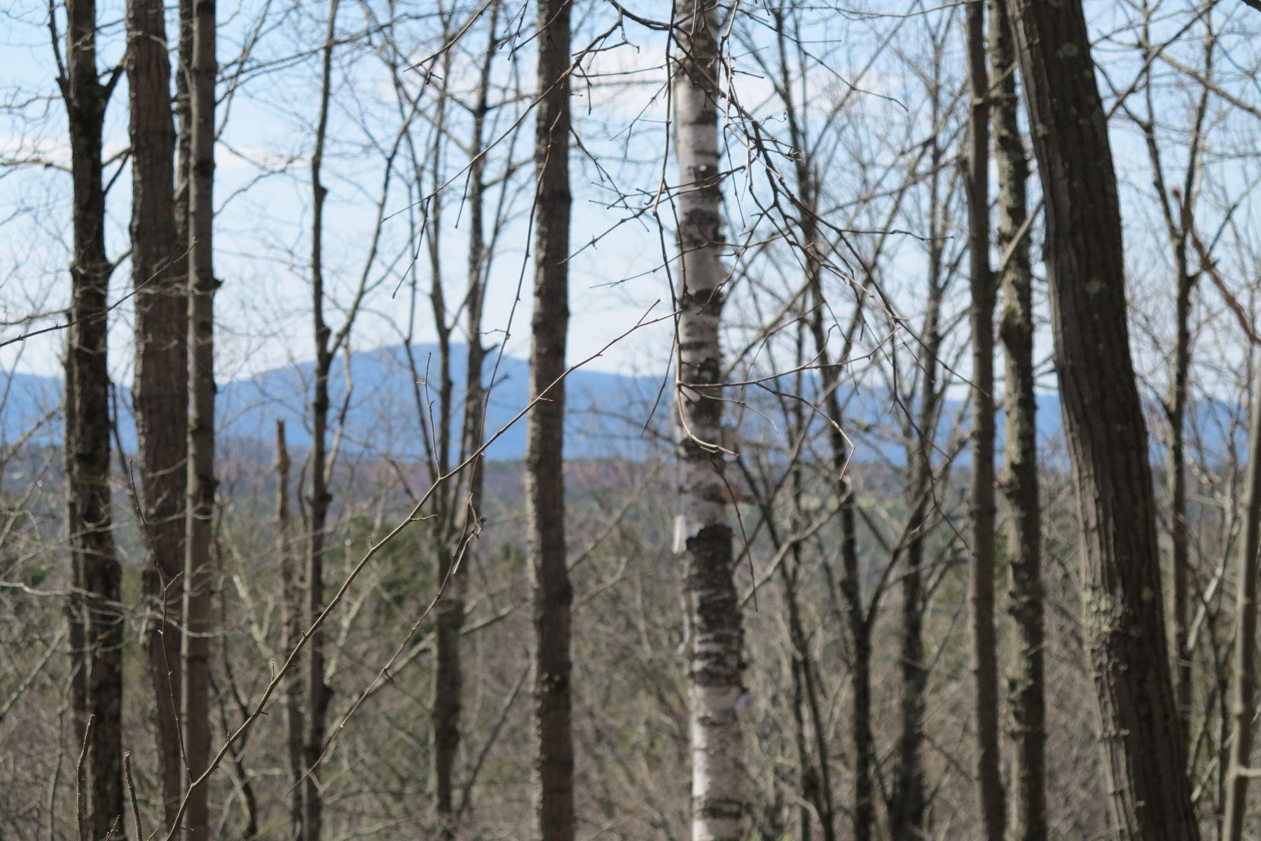 Terreno por un Venta en 21 Plus Acre Parcel with Expansive Northwesterly Views 1370 Canaan Southfield Rd New Marlborough, Massachusetts 01259 Estados Unidos