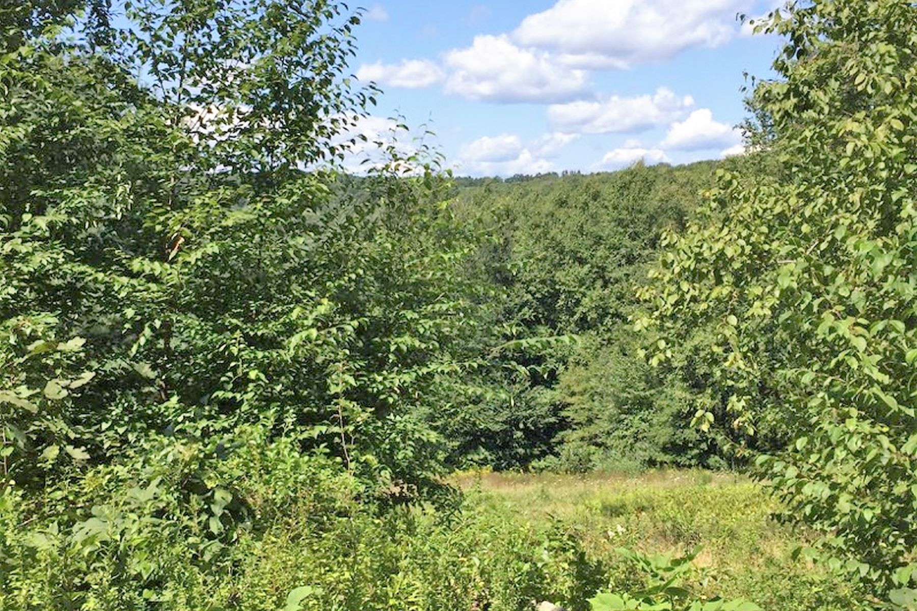 Land for Sale at Lot 1 Davenport Road Roxbury, Connecticut 06783 United States