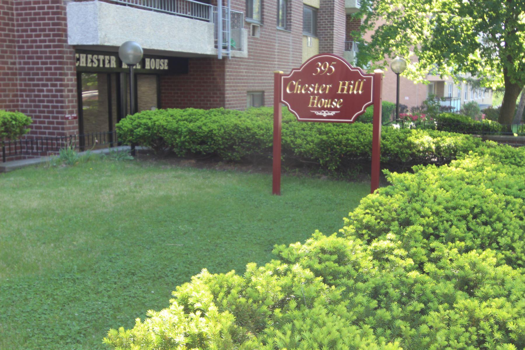 Société civile immobilière pour l à vendre à Affordable Co op 395 Westchester Avenue 1E, Port Chester, New York, 10573 États-Unis