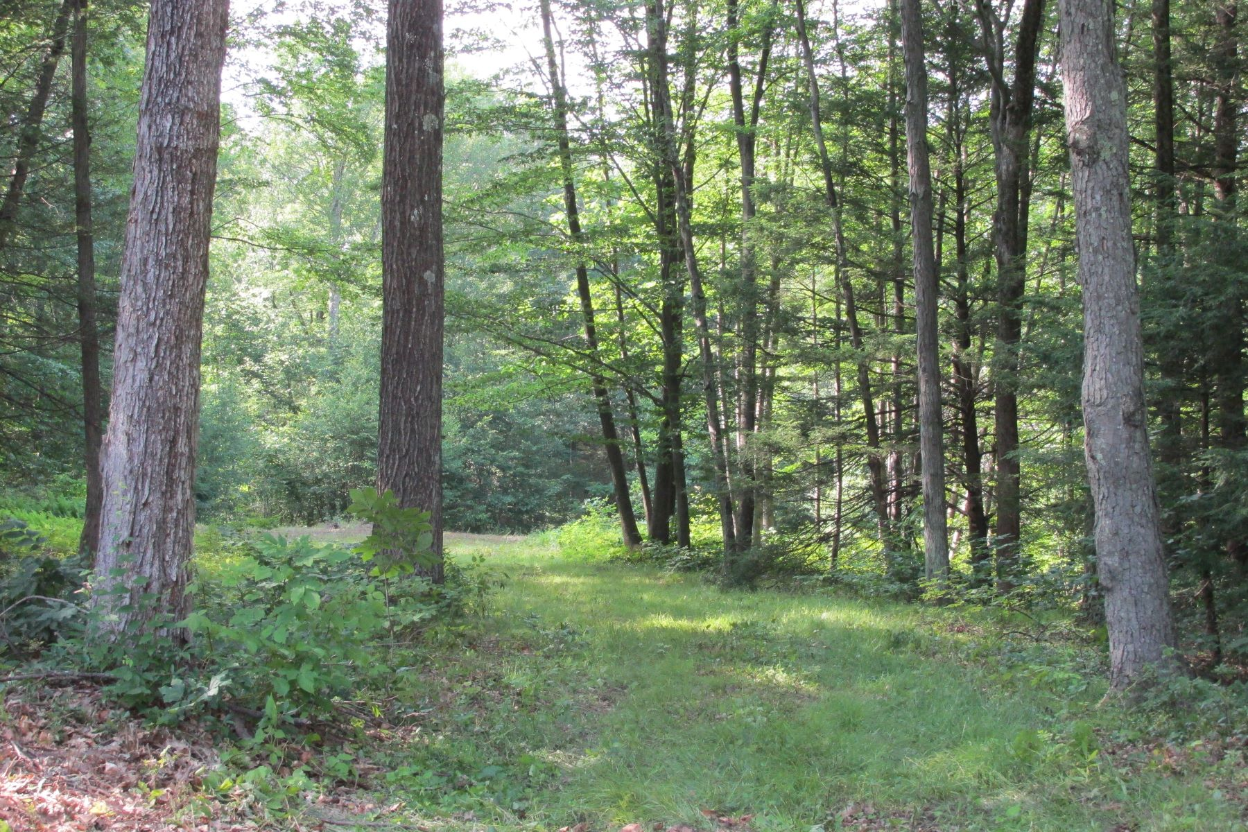 Land for Sale at Beautiful And Scenic 0 Westledge Dr Torrington, Connecticut 06790 United States