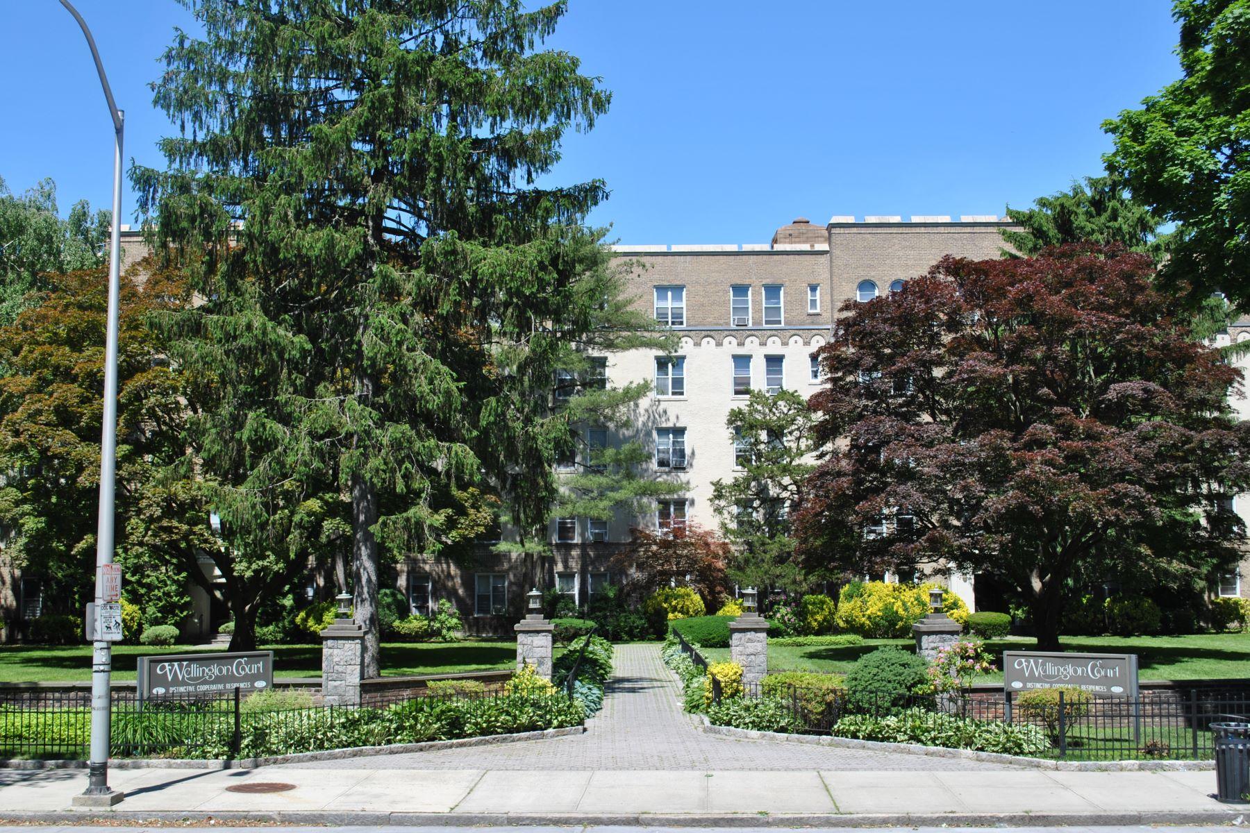 Co-op Properties 為 出售 在 Gorgeous Completely Renovated One Bedroom 472 Gramatan Avenue, H3, Mount Vernon, 纽约 10552 美國