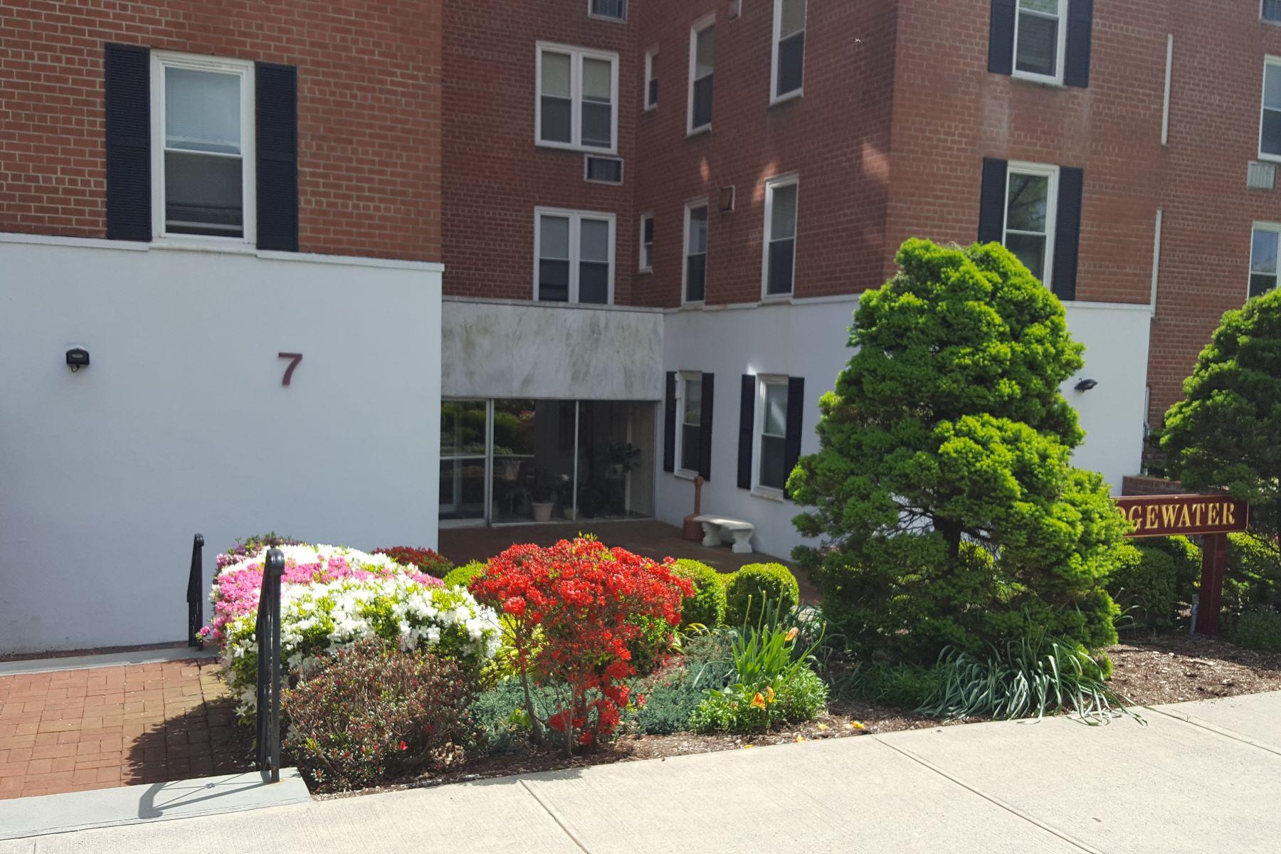 Apartamento por un Alquiler en Edgewater 7 4th Street 5G Stamford, Connecticut 06905 Estados Unidos