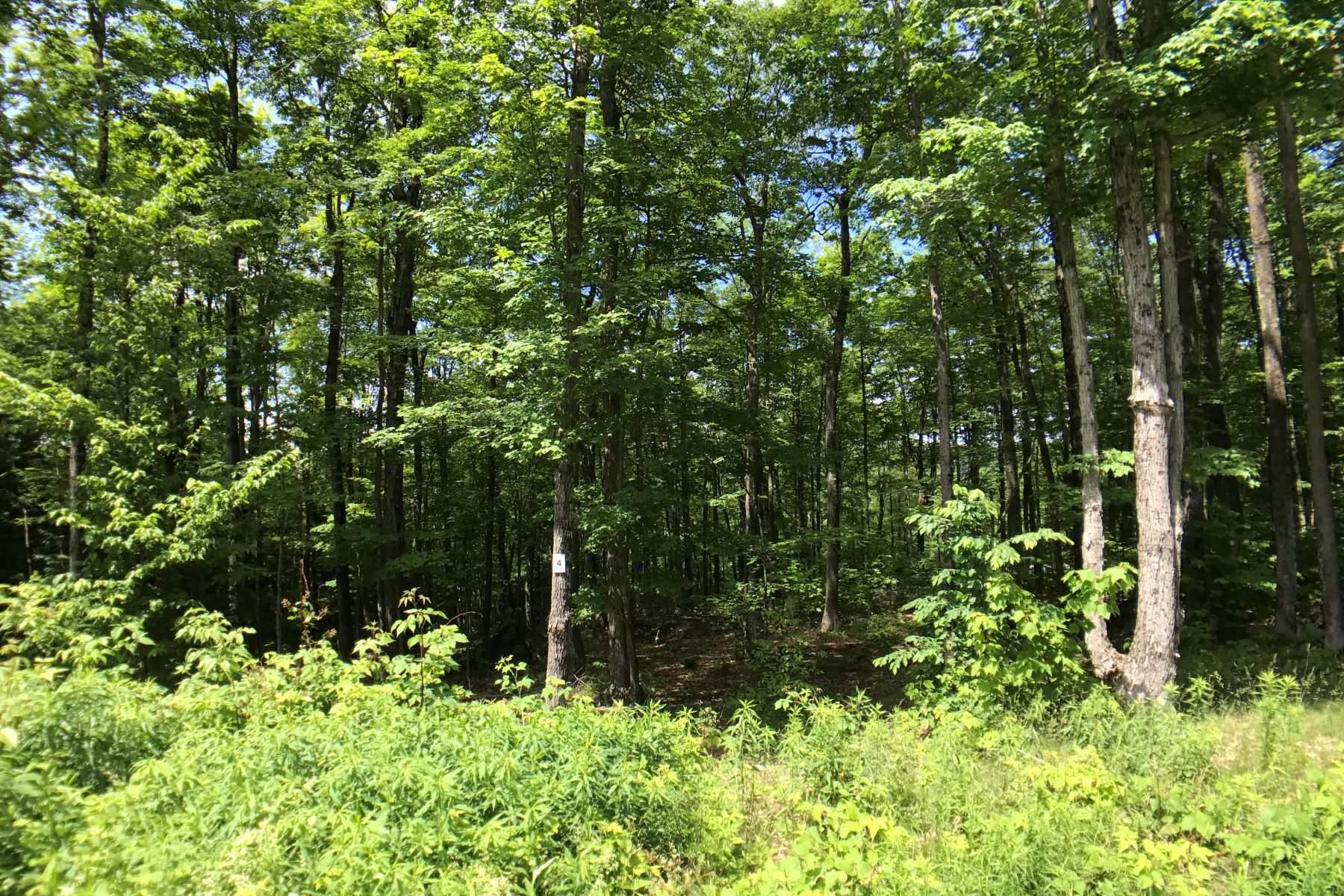 Terrain pour l Vente à Affordable Ready-to-Build Parcel with Shared Waterfront Access Lot #4, Moose Dr, Lee, Massachusetts, 01238 États-Unis