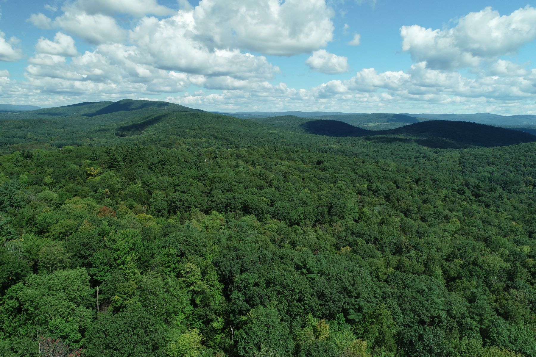 Terrain pour l Vente à Possible Views -115 Acre Parcel Conveniently located between Great Barrington an Lot 84 Great Barrington Rd West Stockbridge, Massachusetts 01266 États-Unis
