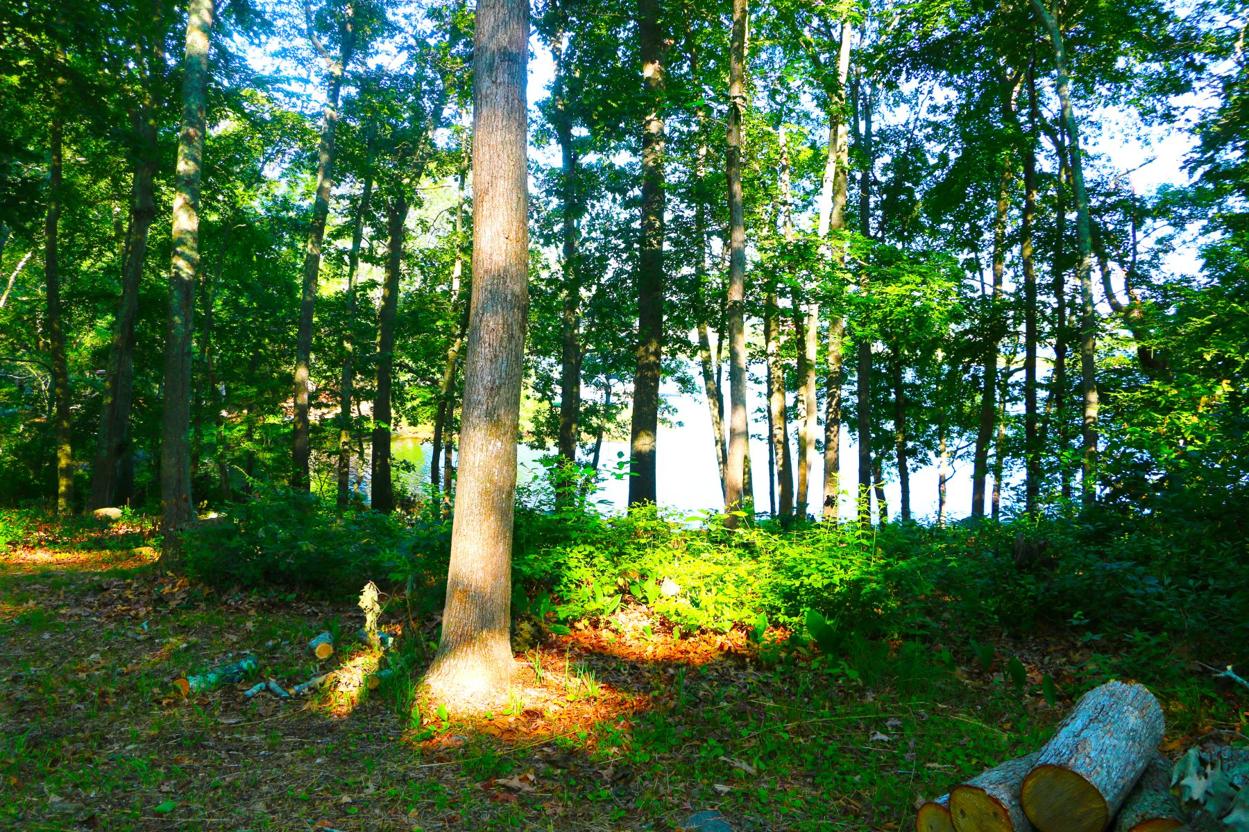Terreno por un Venta en Waterfront Building Lot 28 Money Point Road, Stonington, Connecticut, 06355 Estados Unidos