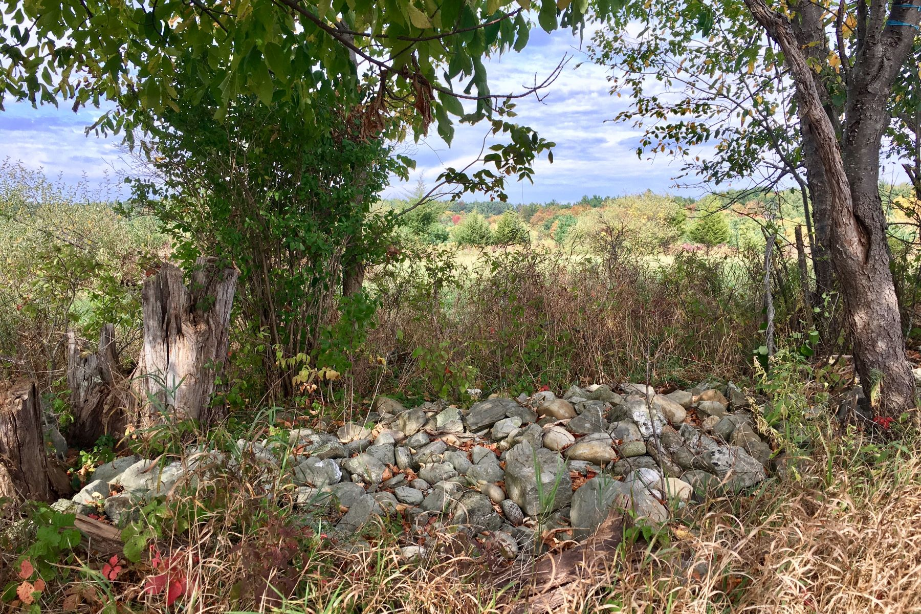 Additional photo for property listing at Beautiful Building Parcel On Over 52 Acres Old Barrington Rd Claverack, New York 12534 United States