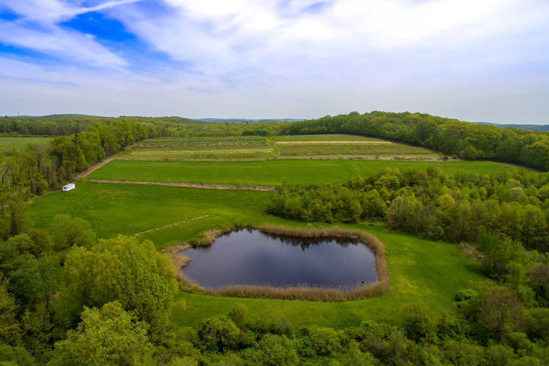 Farm / Ranch / Plantation for Sale at Ellsworth Hill Orchard 461a Cornwall Bridge Road Sharon, Connecticut 06069 United States