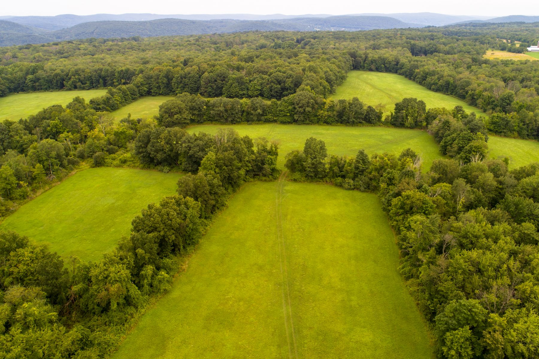 Land for Sale at 37 Popple Swamp Road Washington, Connecticut 06794 United States