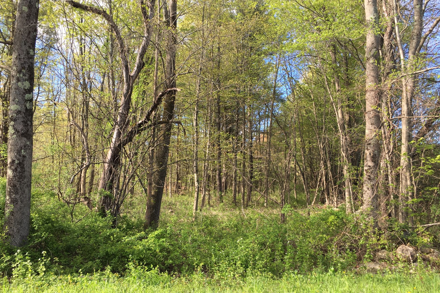 Land for Sale at Terrific Private Lot with Association Pool and Tennis Konkapot Rd New Marlborough, Massachusetts 01259 United States