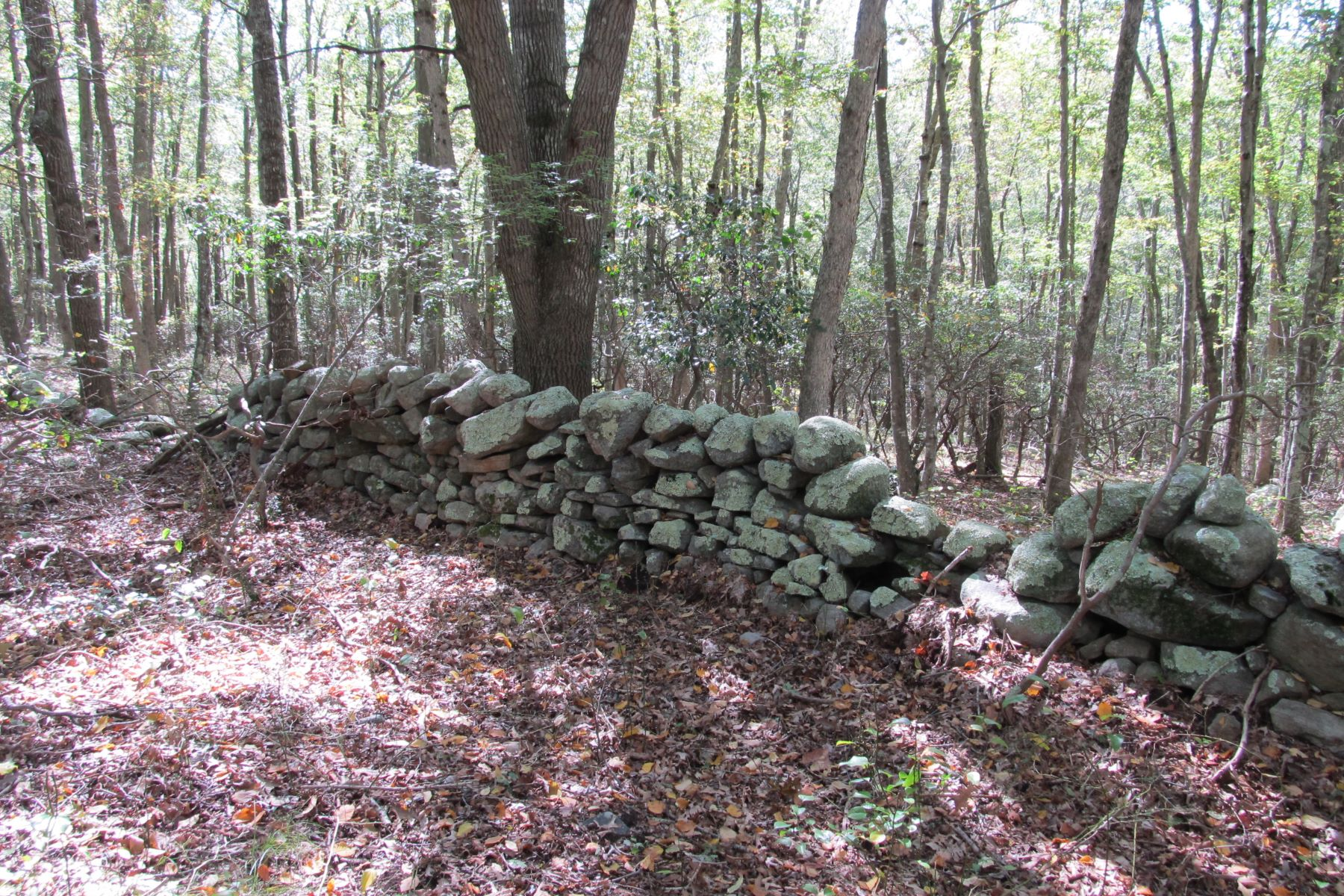 Additional photo for property listing at Beautiful Wooded Parcel 48 Butlertown Road Waterford, Connecticut 06385 United States