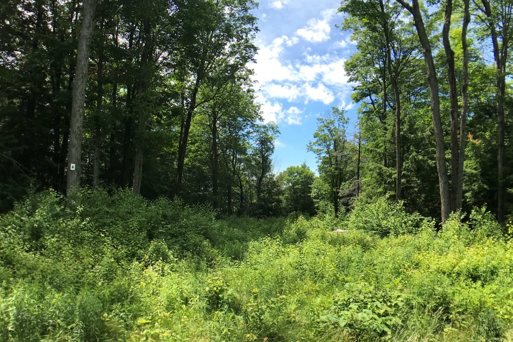 Terrain pour l Vente à Affordable Ready-to-Build Parcel with Shared Waterfront Access Lot #6, Moose Dr, Lee, Massachusetts, 01238 États-Unis