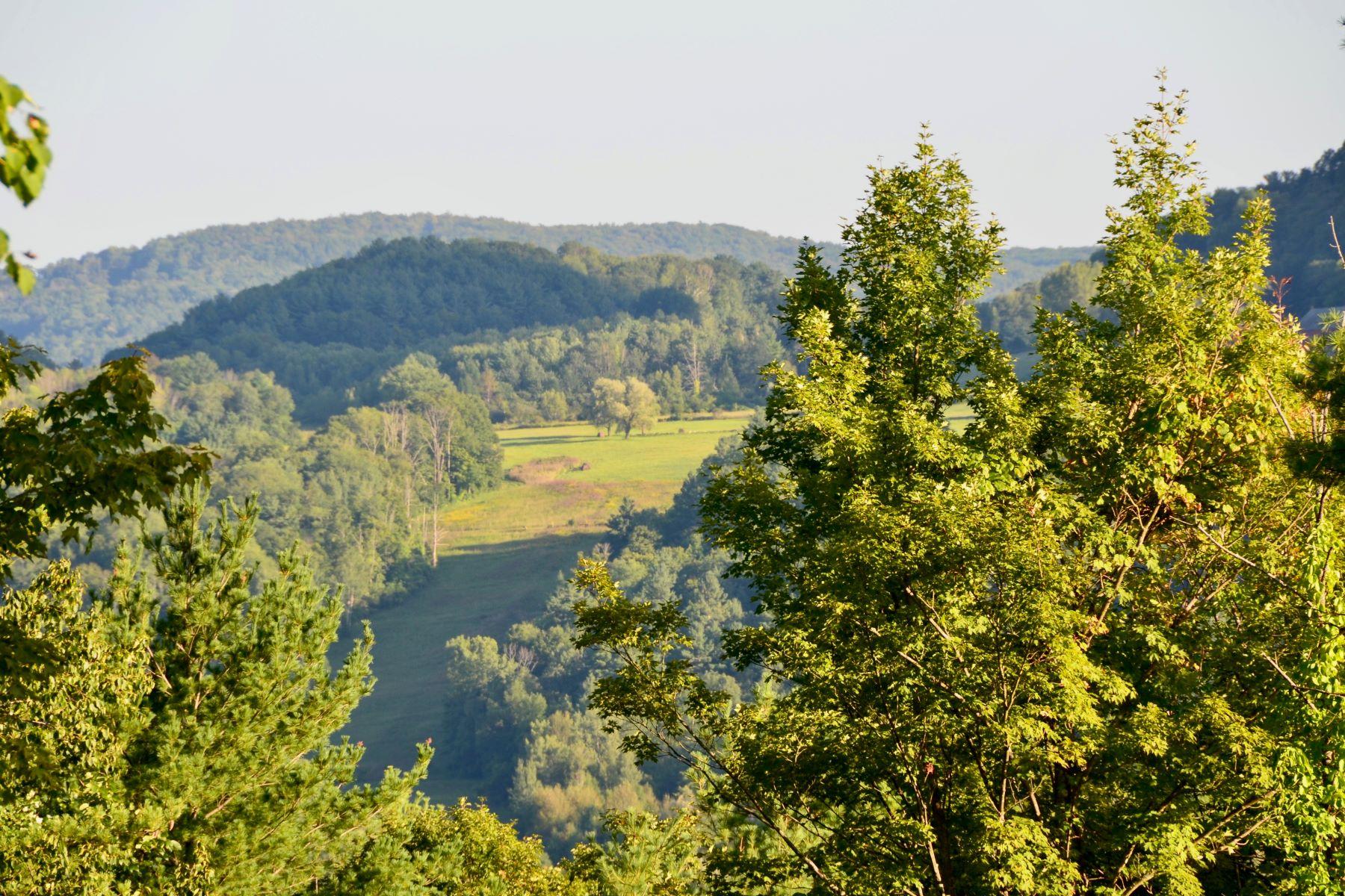 Terrain pour l Vente à 87 Acres with Tyringham Valley Views 3 Main Rd Tyringham, Massachusetts 01264 États-Unis