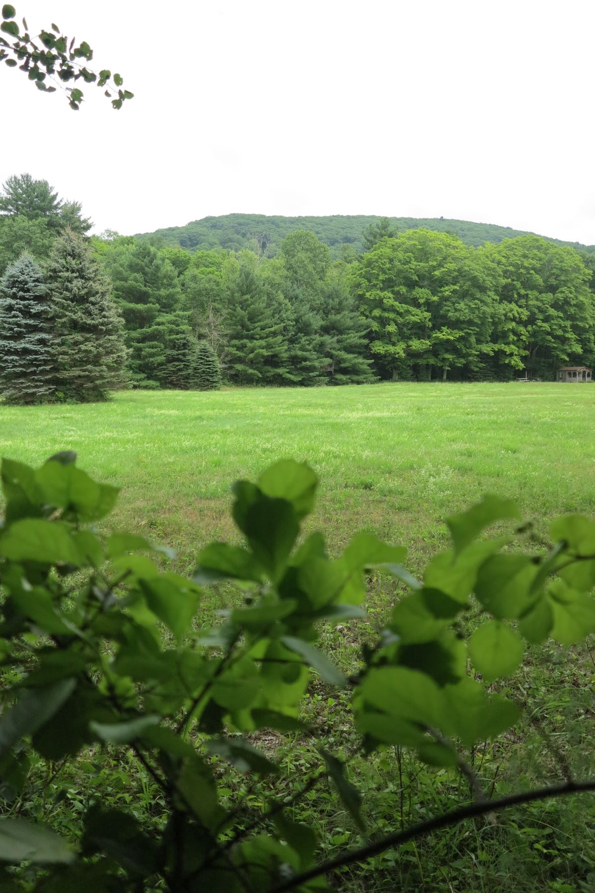Land for Sale at Estate Parcel - 21.347 Acres with River Frontage and Meadow 112 New Marlboro-southfield Rd, New Marlborough, Massachusetts, 01230 United States