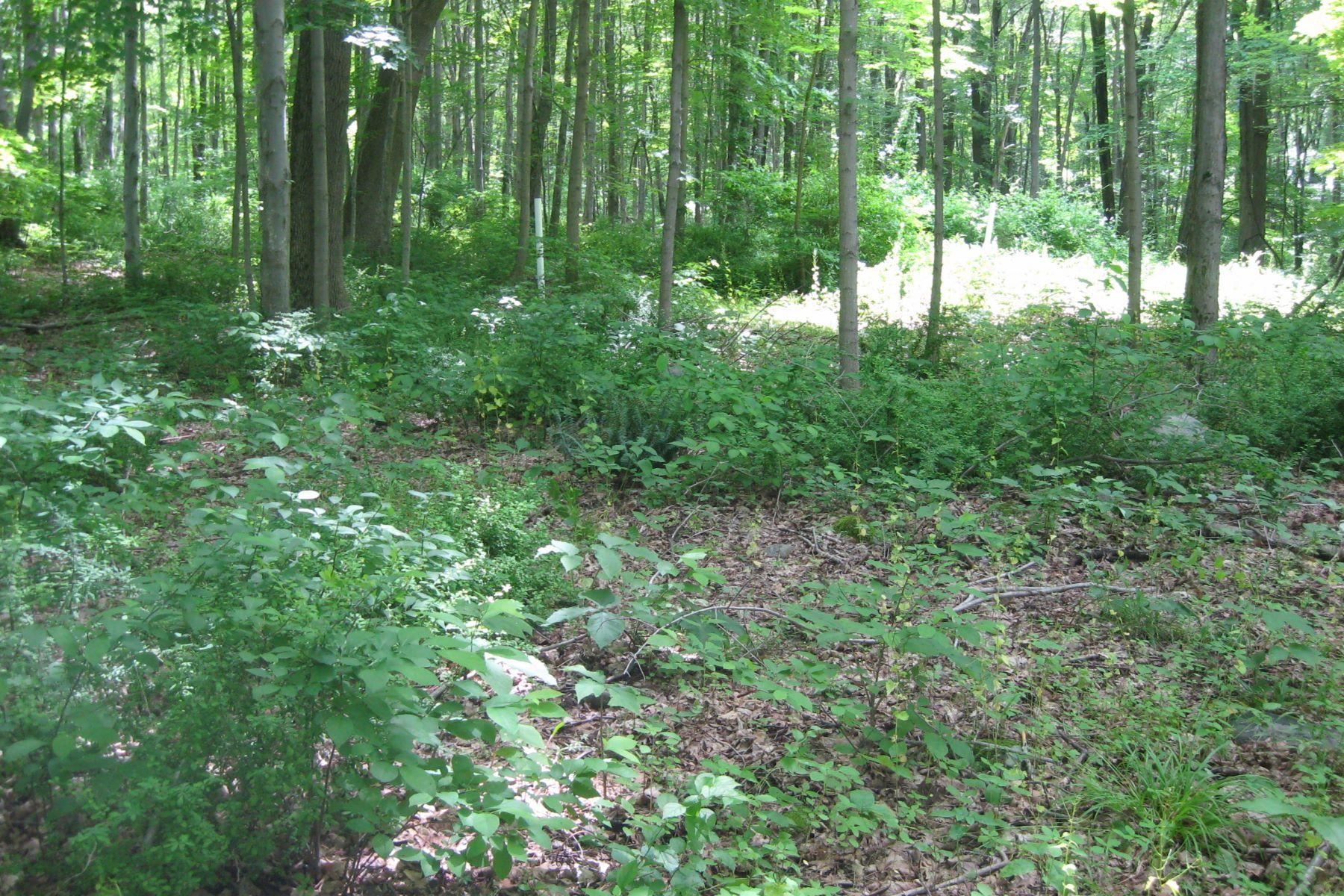 Земля для того Продажа на Candlewood Terrace Lake Community Juniper Drive, New Milford, Коннектикут, 06776 Соединенные Штаты