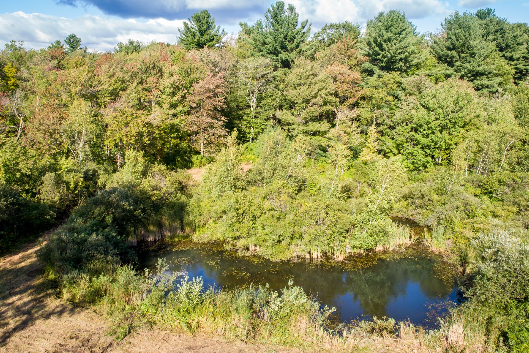 Additional photo for property listing at  Norfolk, Connecticut 06058 Förenta staterna
