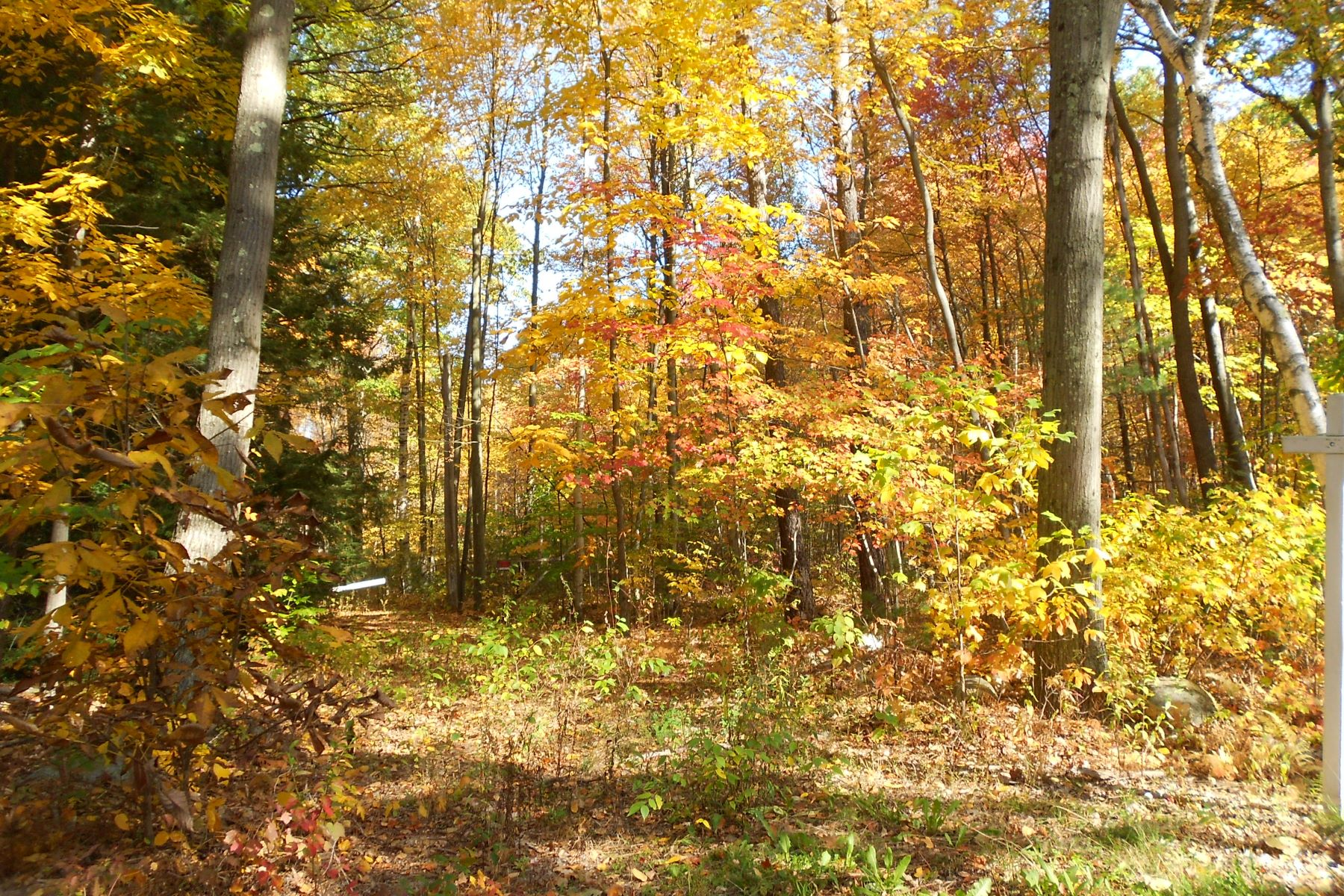 Land for Sale at Country Lot 57 Fenn Road Litchfield, Connecticut 06778 United States