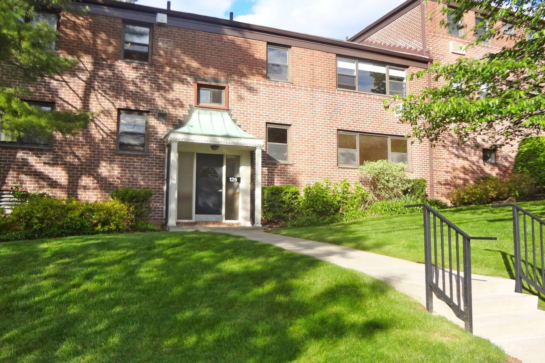 Co-op Properties 為 出售 在 125 Beacon Hill Drive, F11, Dobbs Ferry, 纽约 10522 美國