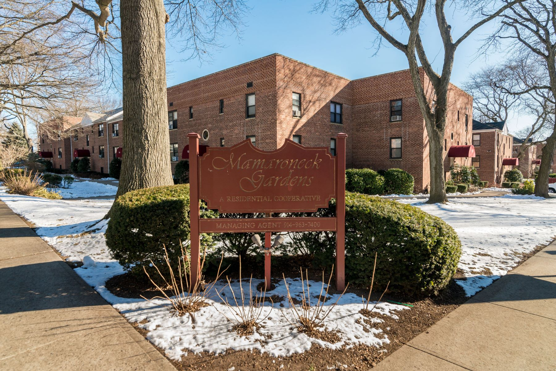 Co-op Properties for Sale at Bright and Spacious 124 Richbell Road B2 Mamaroneck, New York 10543 United States