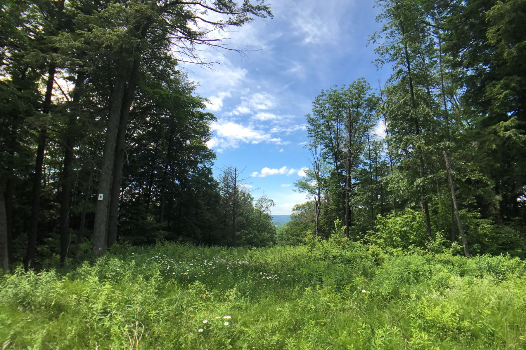 Terreno por un Venta en Affordable Ready-to-Build Parcel with Shared Waterfront Access Lot #5, Moose Dr Lee, Massachusetts, 01238 Estados Unidos