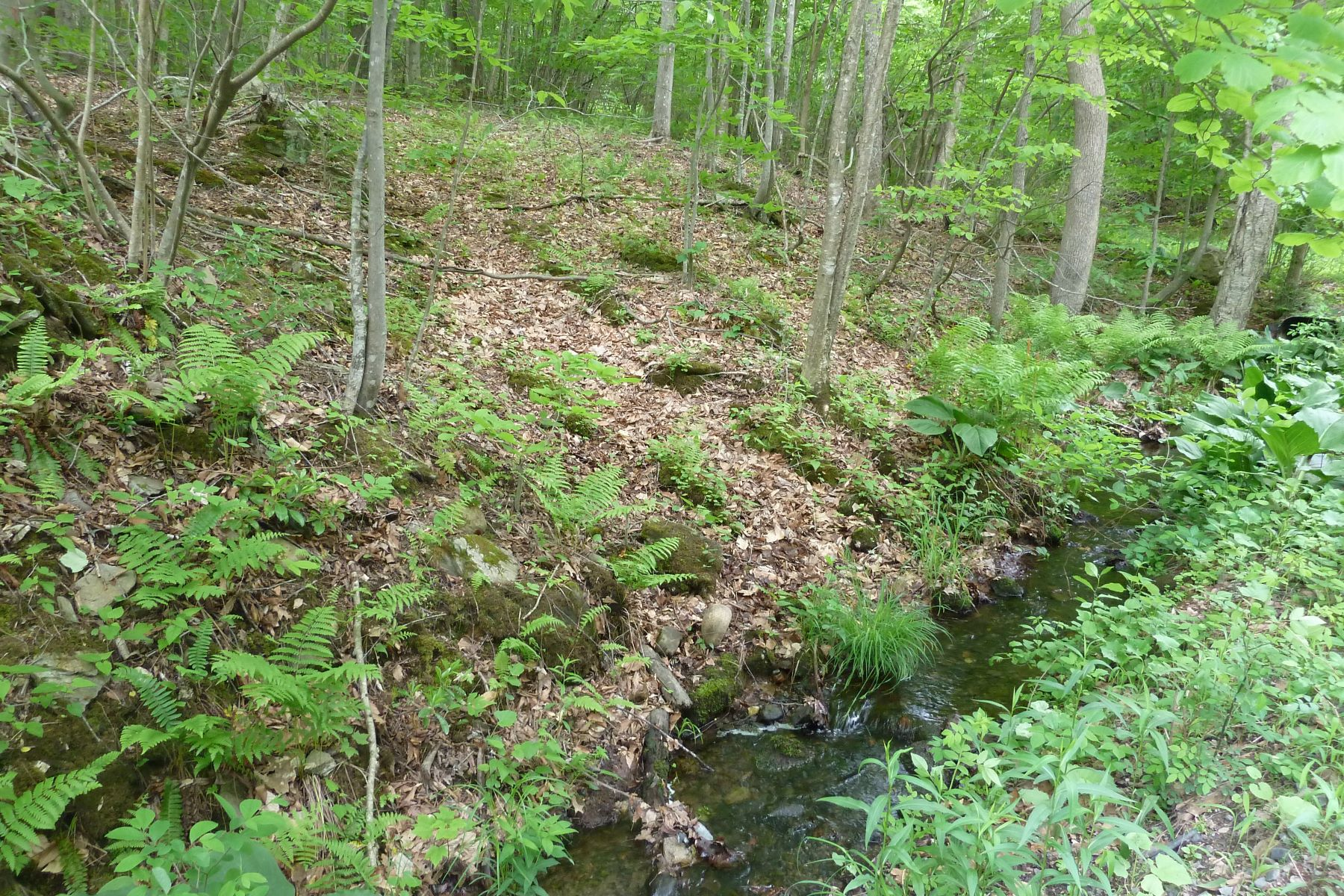 Land for Sale at 177 East Flag Swamp Road Roxbury, Connecticut 06783 United States