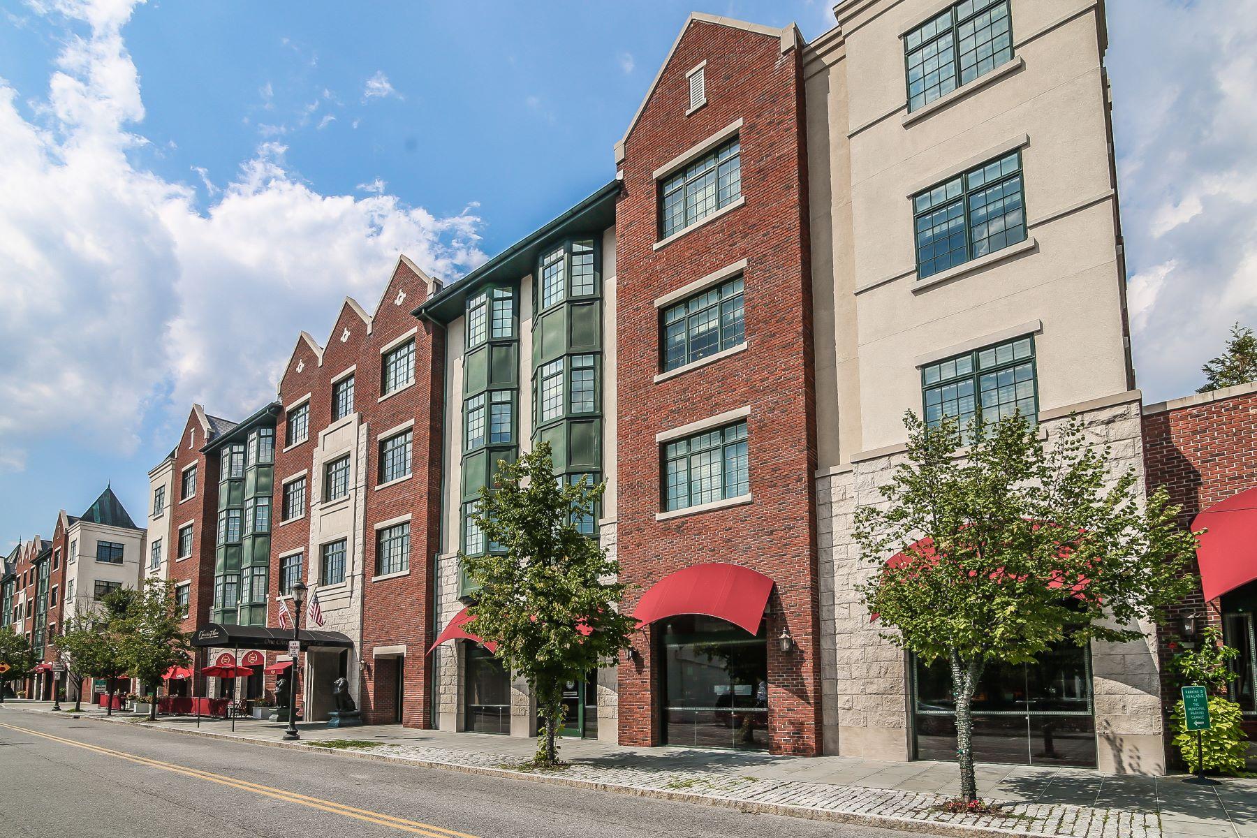 共管式独立产权公寓 为 销售 在 Scarsdale's Luxury Residence at Christie Place 1 Christie Place 205E 斯卡斯代尔, 纽约州 10583 美国