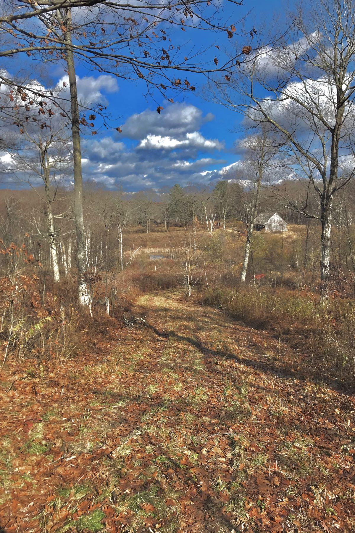 土地,用地 为 销售 在 Stunnng 50 acres with views 00 Brick School Road, 沃伦, 康涅狄格州 06754 美国