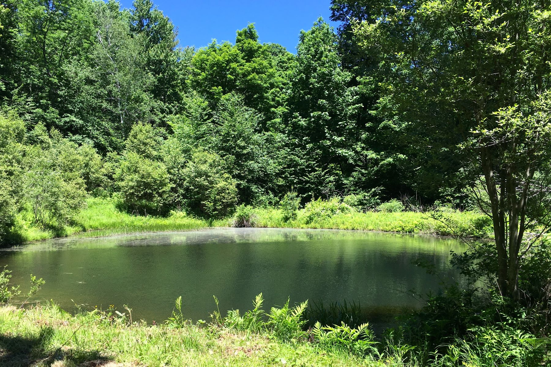 Land for Sale at Wonderful 12+ Acre Parcel with Pond 388 Harrington Dr Austerlitz, New York 12017 United States