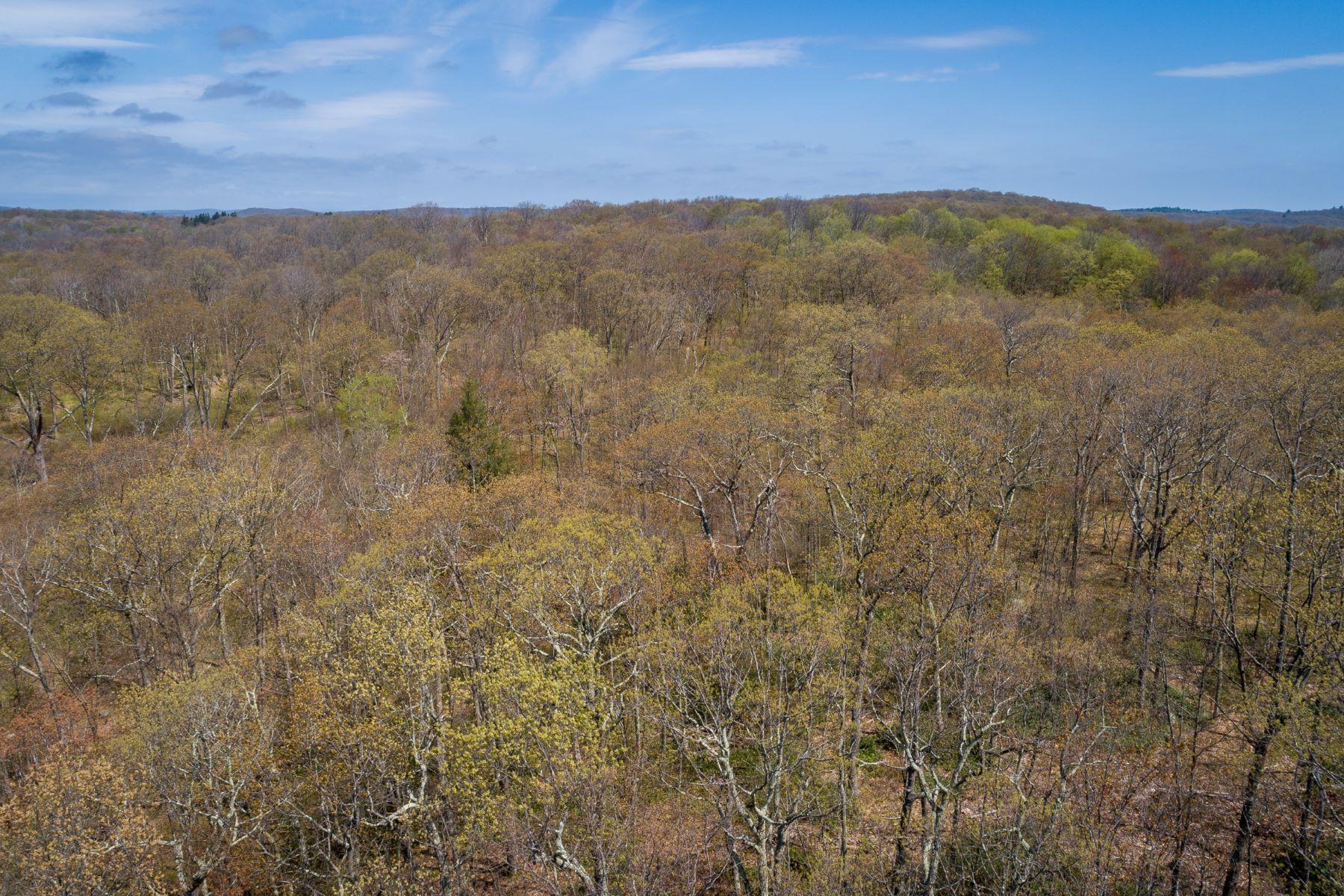 Land voor Verkoop op Incredible Opportunity 00 Cunningham Road, Warren, Connecticut 06754 Verenigde Staten