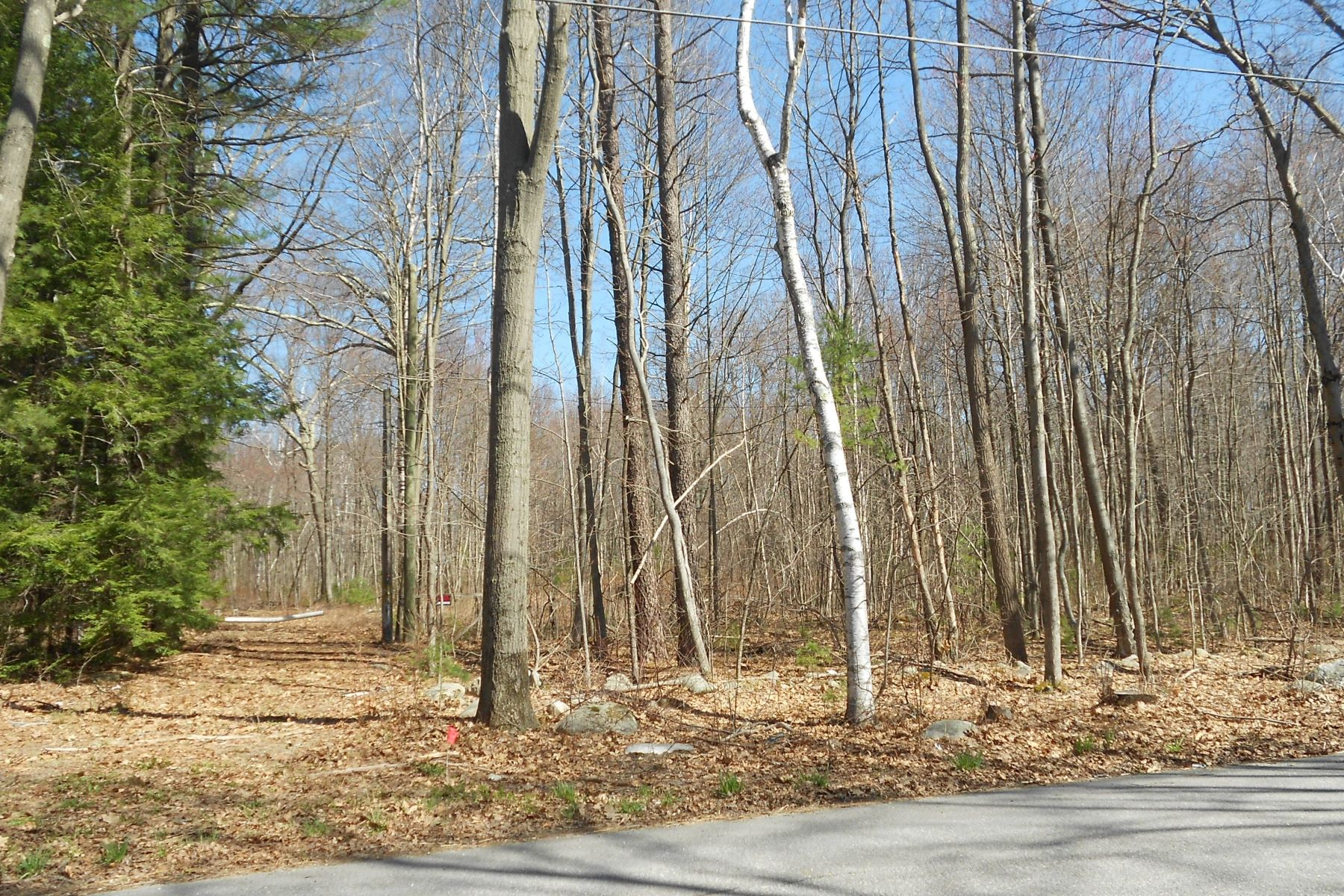 Land for Sale at Country Lot 57 Fenn Road, Litchfield, Connecticut 06759 United States
