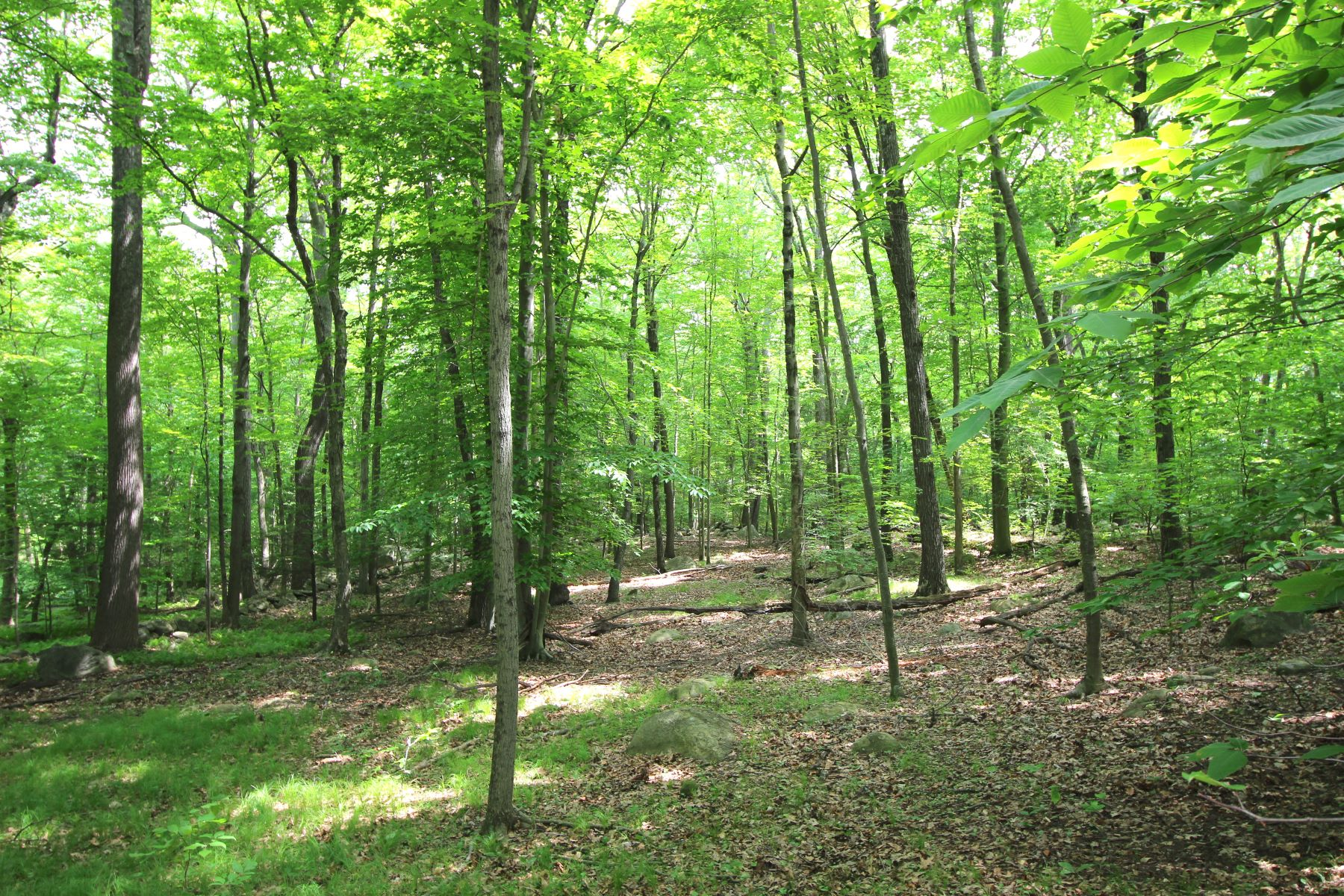 Land for Sale at Mountain Road Mountain Road Wilton, Connecticut 06897 United States