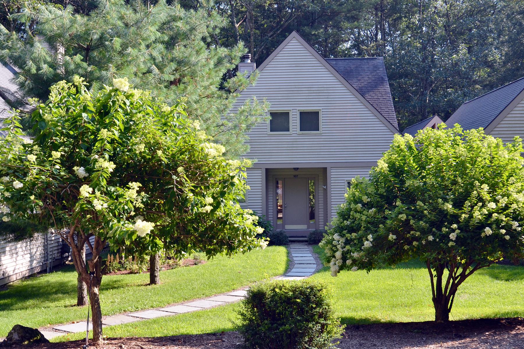 Частный односемейный дом для того Продажа на Sublime Lake Community Home 107 Arcadia Ancram, Нью-Йорк 12502 Соединенные Штаты