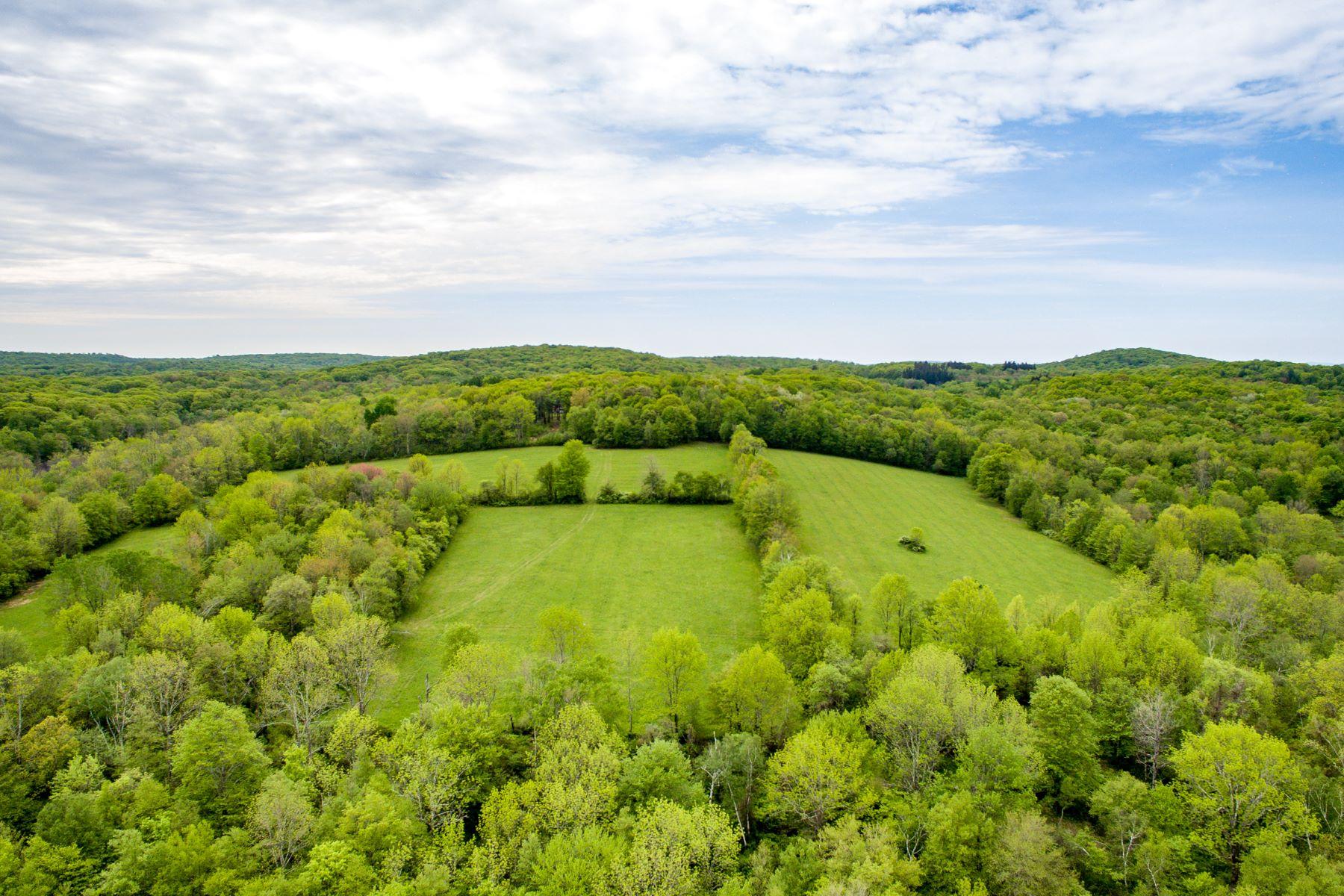Land voor Verkoop op Premier 91 acre parcel 0 Brick School Road, Warren, Connecticut 06754 Verenigde Staten