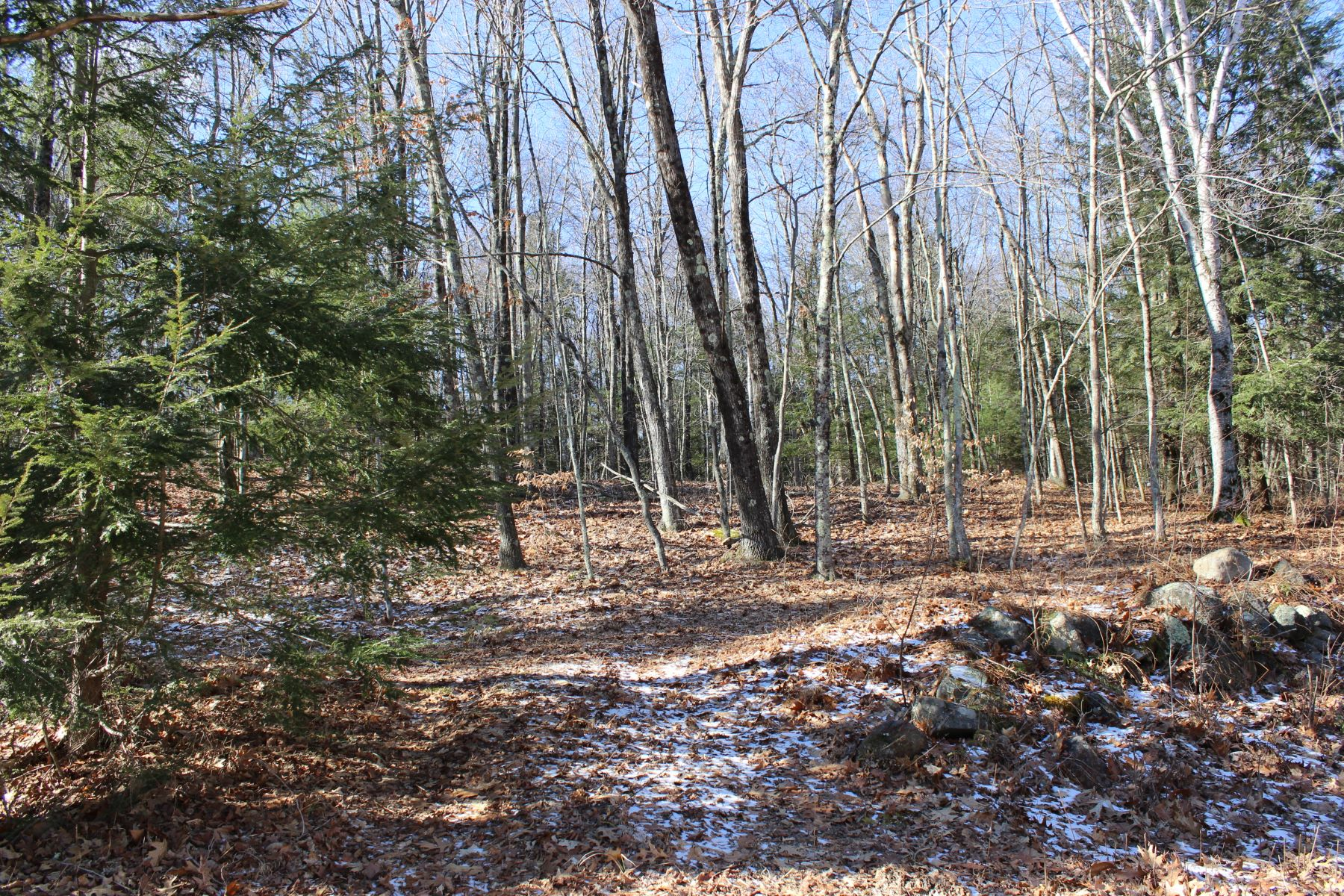 Property For Sale Litchfield