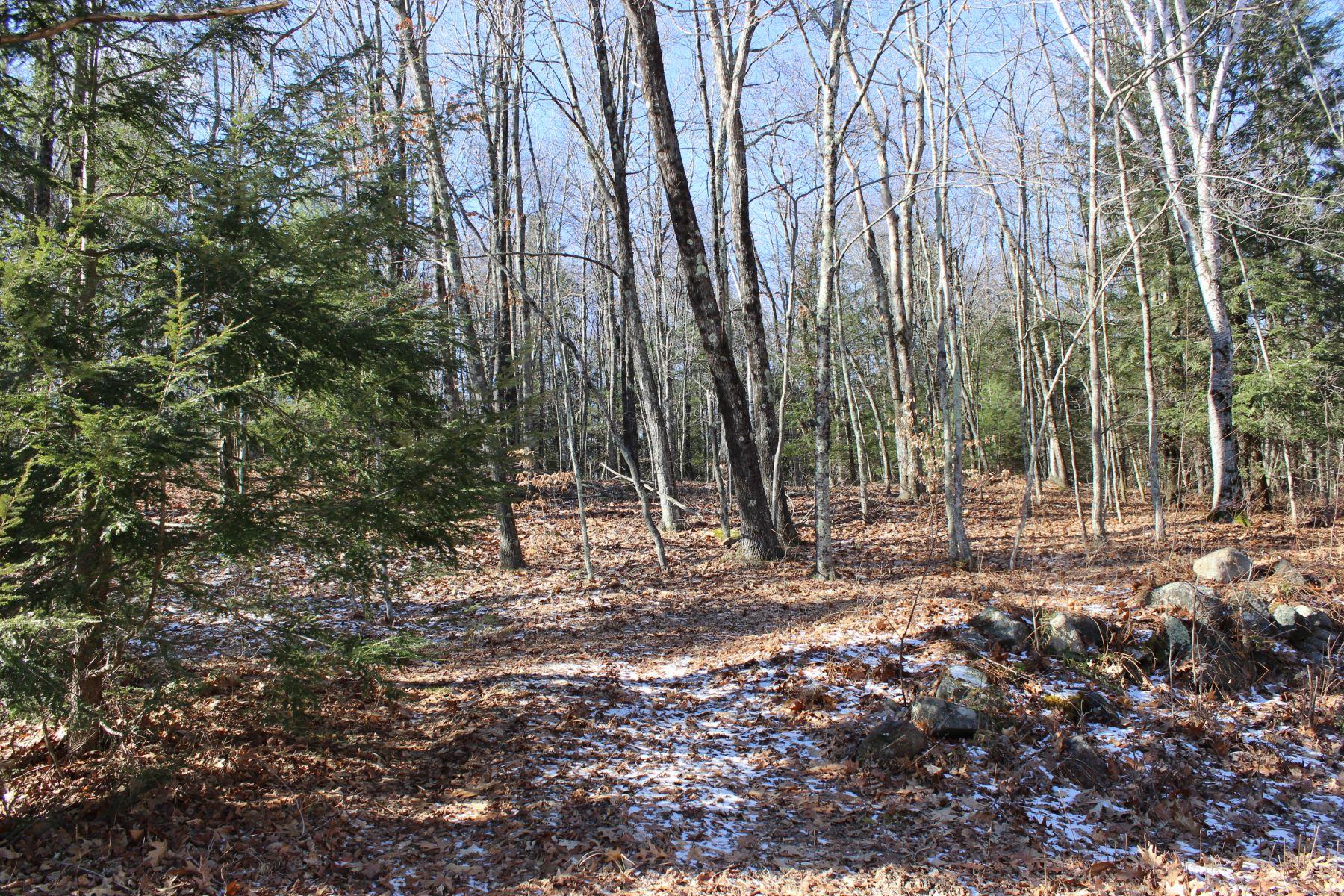 土地 为 销售 在 Choice 37+ Acre Parcel 11 Donahue Rd Extension, 利奇菲尔德, 康涅狄格州, 06750 美国