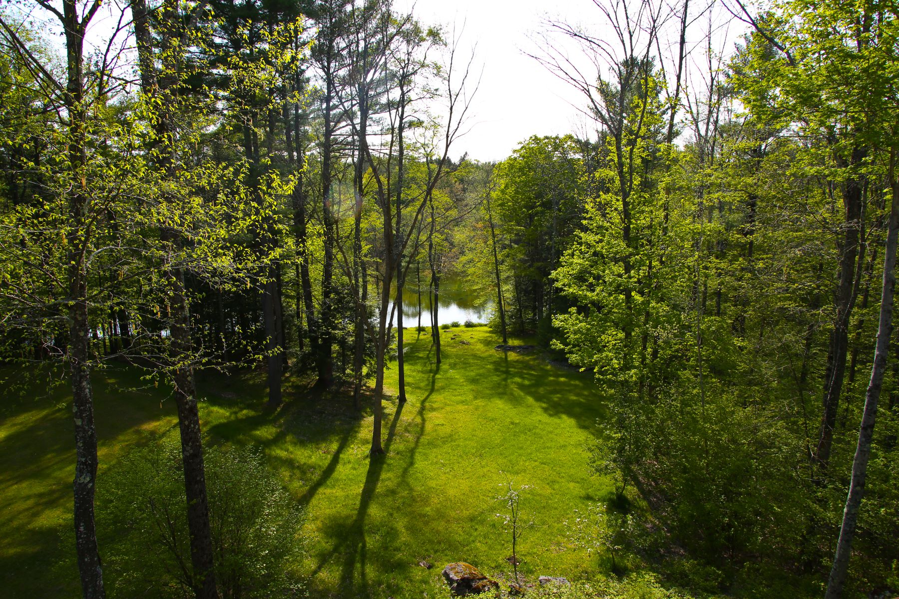 Additional photo for property listing at 47 Acre Country Oasis with 3 Acre Pond, Pool & Hiking & XC Ski Trails 238 Rossiter Rd Richmond, Massachusetts 01254 United States